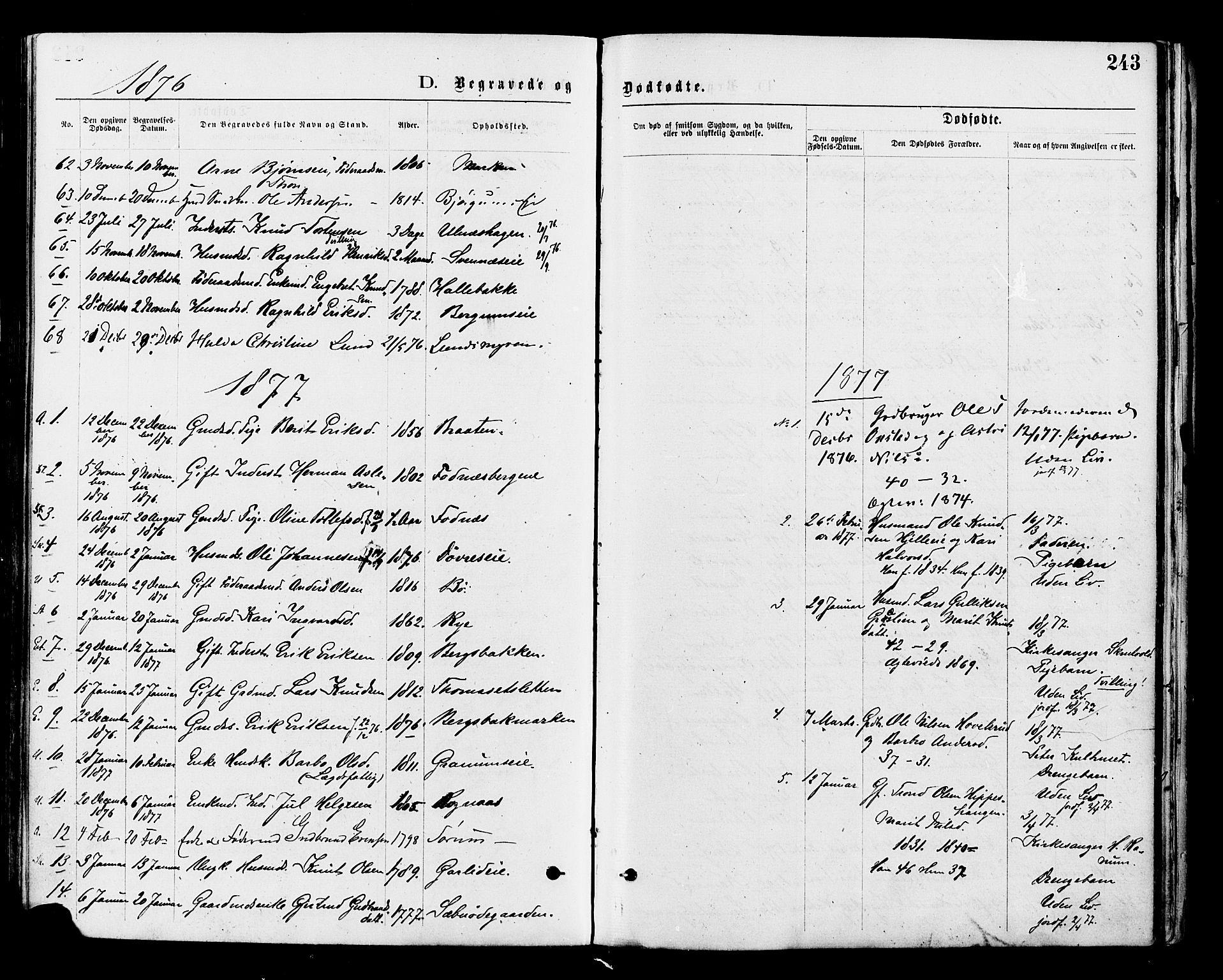 SAH, Nord-Aurdal prestekontor, Ministerialbok nr. 9, 1876-1882, s. 243