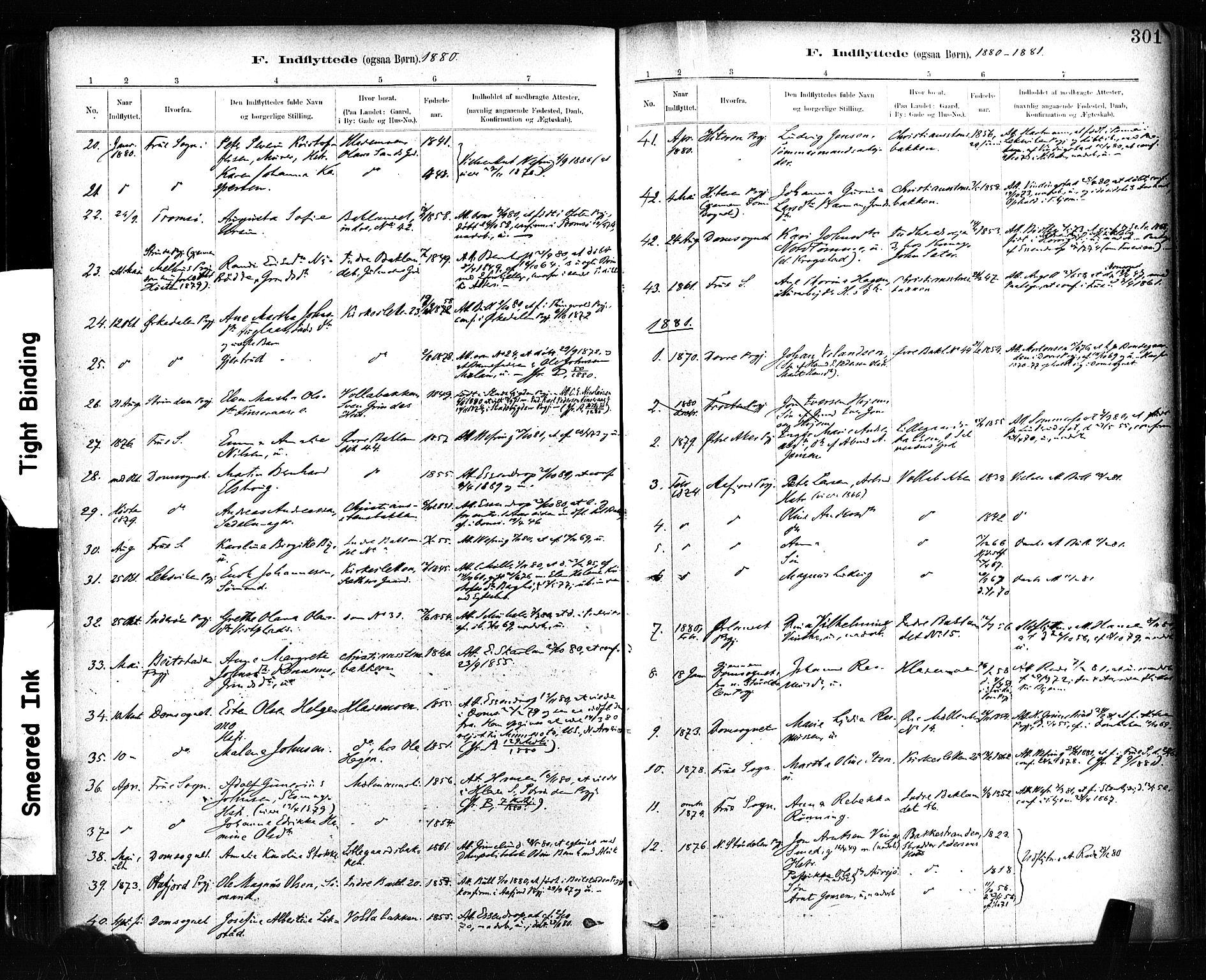 SAT, Ministerialprotokoller, klokkerbøker og fødselsregistre - Sør-Trøndelag, 604/L0189: Ministerialbok nr. 604A10, 1878-1892, s. 301