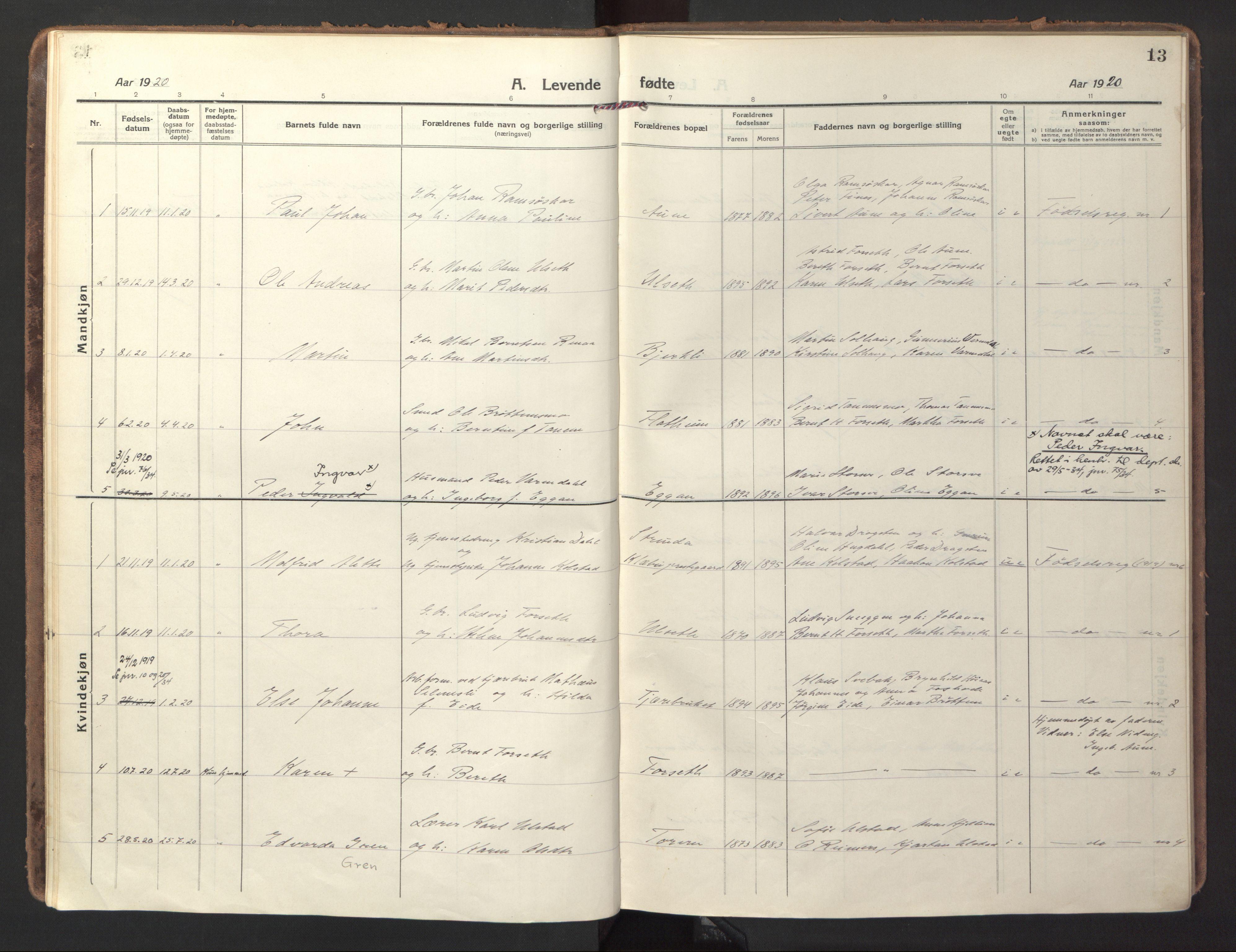 SAT, Ministerialprotokoller, klokkerbøker og fødselsregistre - Sør-Trøndelag, 618/L0449: Ministerialbok nr. 618A12, 1917-1924, s. 13