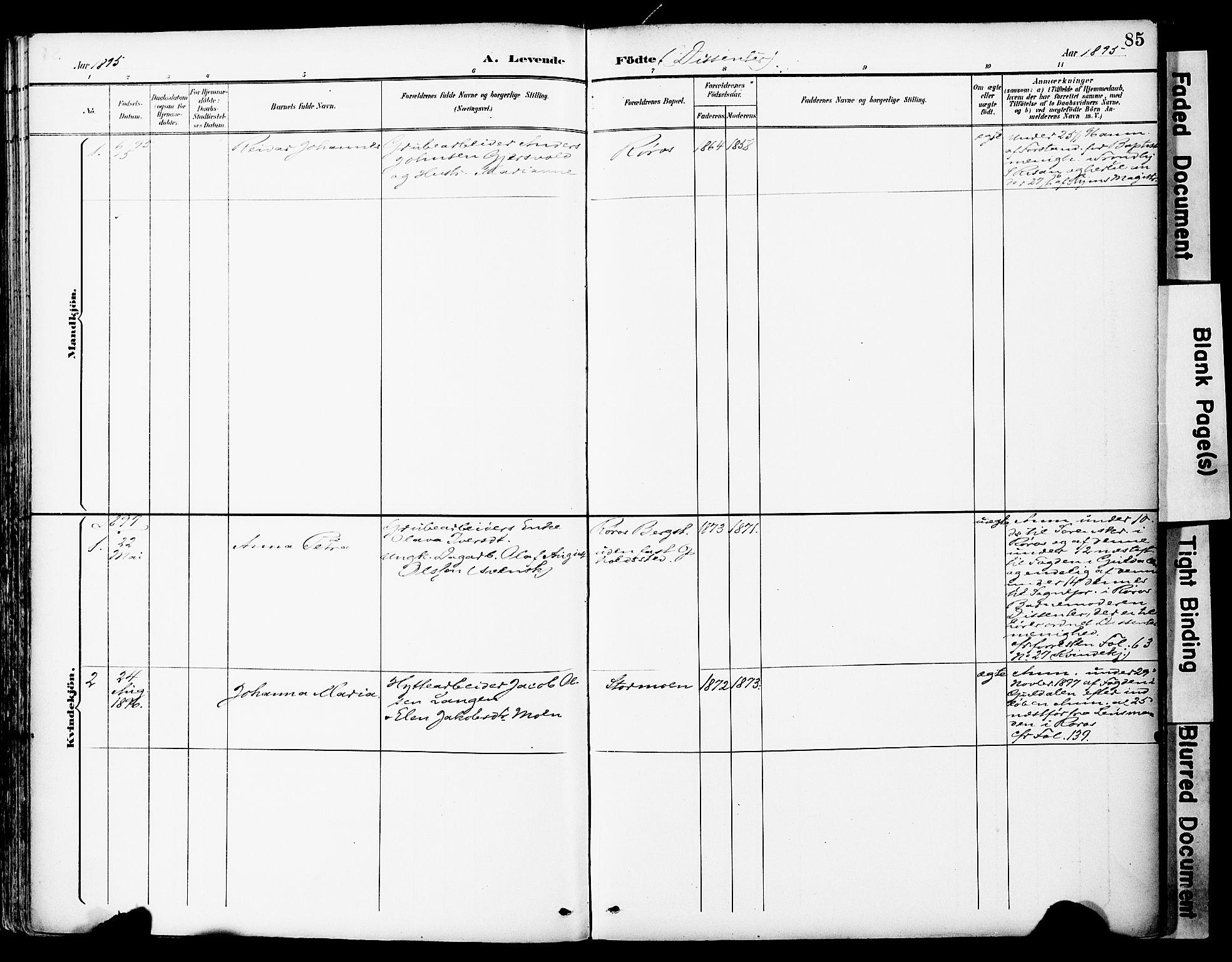 SAT, Ministerialprotokoller, klokkerbøker og fødselsregistre - Sør-Trøndelag, 681/L0935: Ministerialbok nr. 681A13, 1890-1898, s. 85