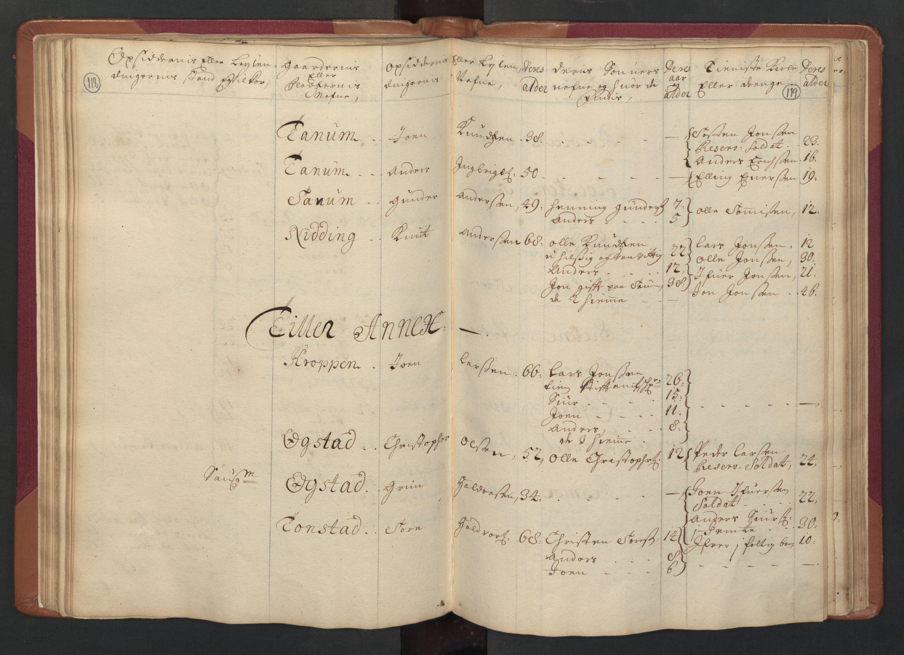 RA, Manntallet 1701, nr. 14: Strinda og Selbu fogderi, 1701, s. 118-119