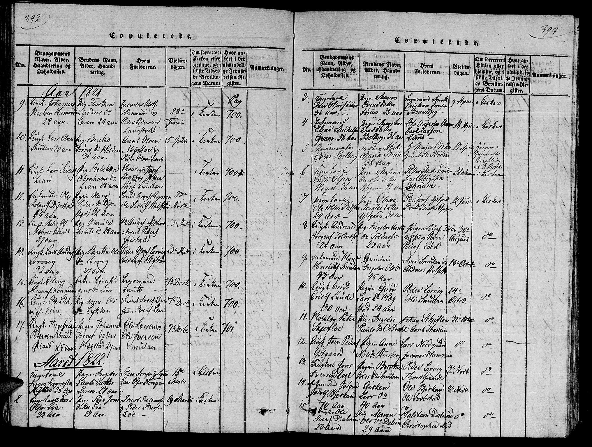 SAT, Ministerialprotokoller, klokkerbøker og fødselsregistre - Nord-Trøndelag, 735/L0333: Ministerialbok nr. 735A04 /1, 1816-1824, s. 392-393