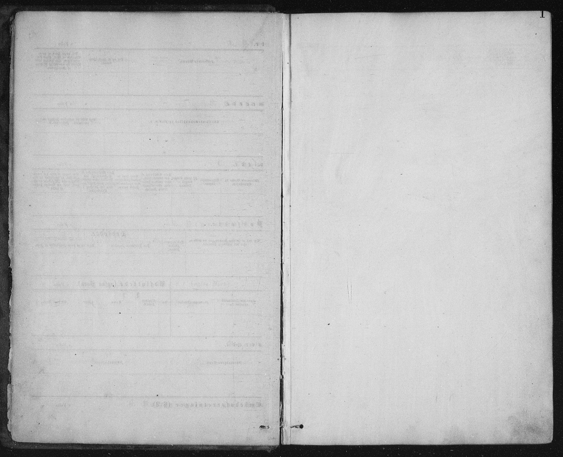 SAT, Ministerialprotokoller, klokkerbøker og fødselsregistre - Nord-Trøndelag, 771/L0596: Ministerialbok nr. 771A03, 1870-1884, s. 1