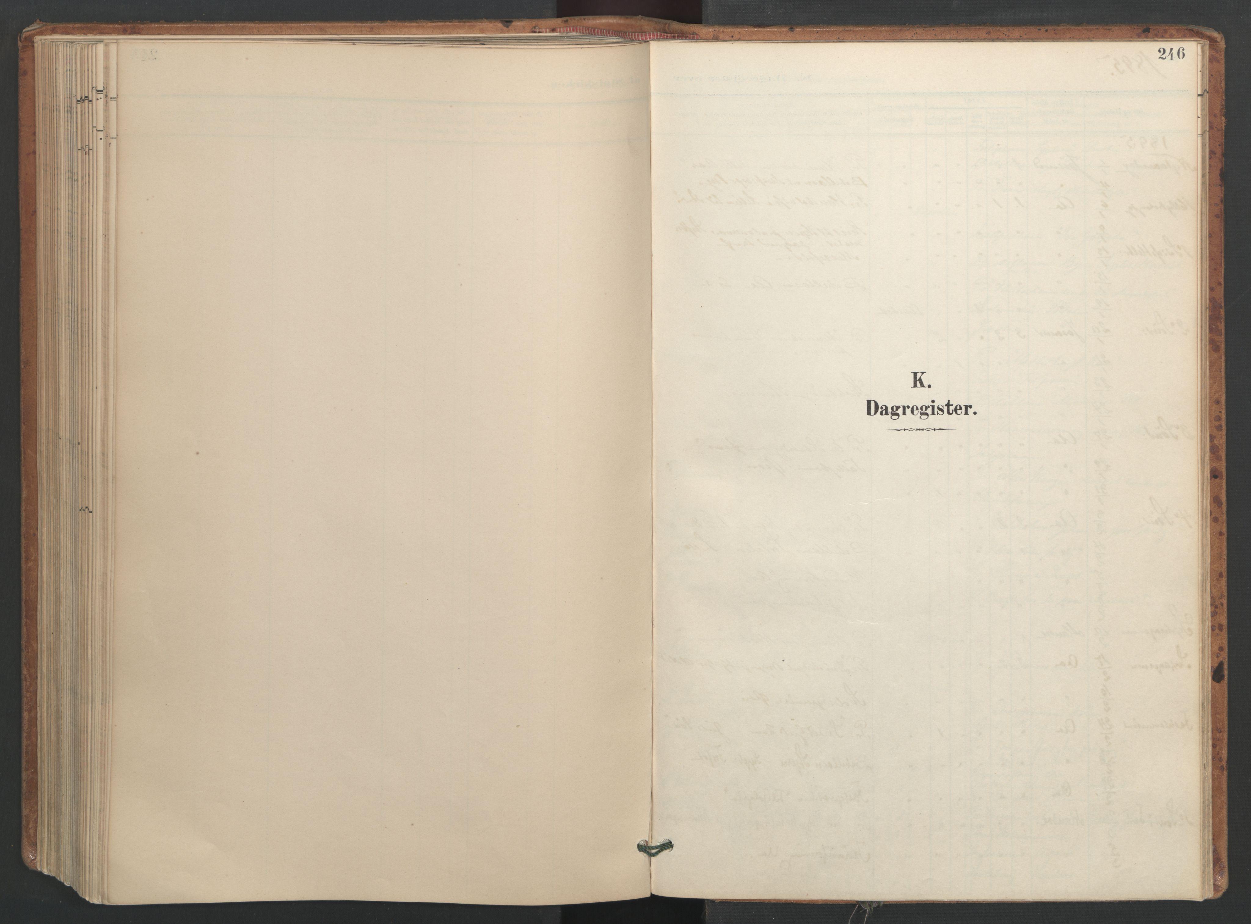 SAT, Ministerialprotokoller, klokkerbøker og fødselsregistre - Sør-Trøndelag, 655/L0681: Ministerialbok nr. 655A10, 1895-1907, s. 246