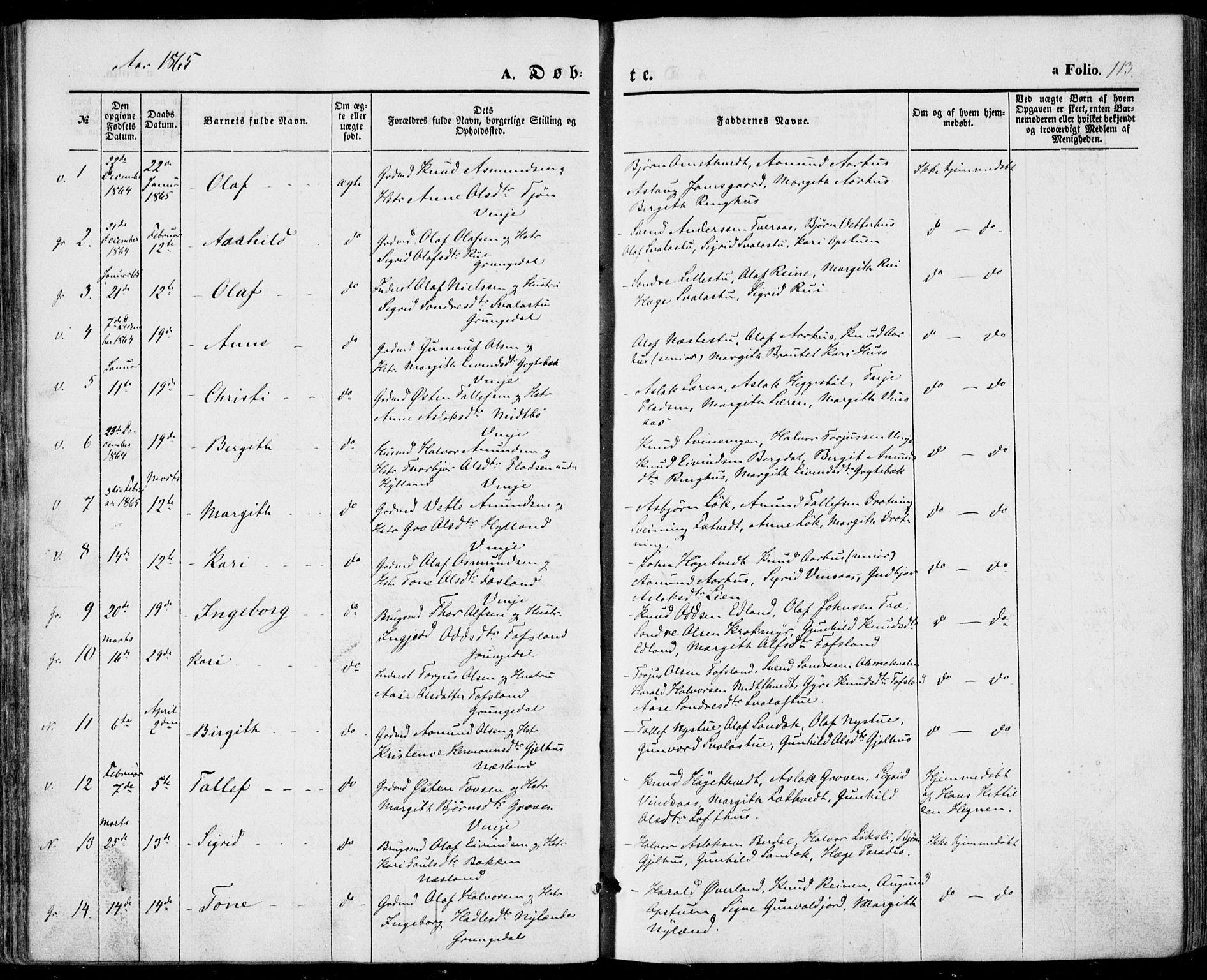 SAKO, Vinje kirkebøker, F/Fa/L0004: Ministerialbok nr. I 4, 1843-1869, s. 113