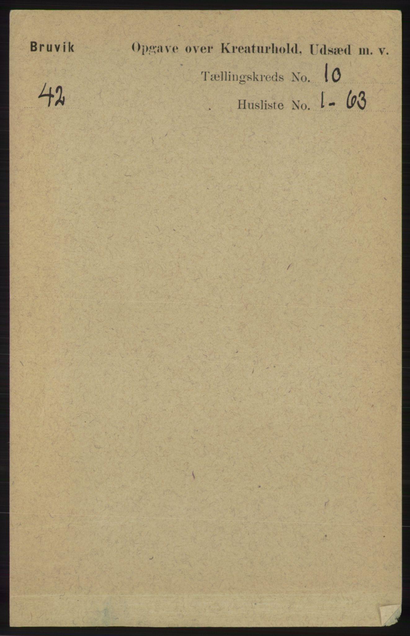 RA, Folketelling 1891 for 1251 Bruvik herred, 1891, s. 4895