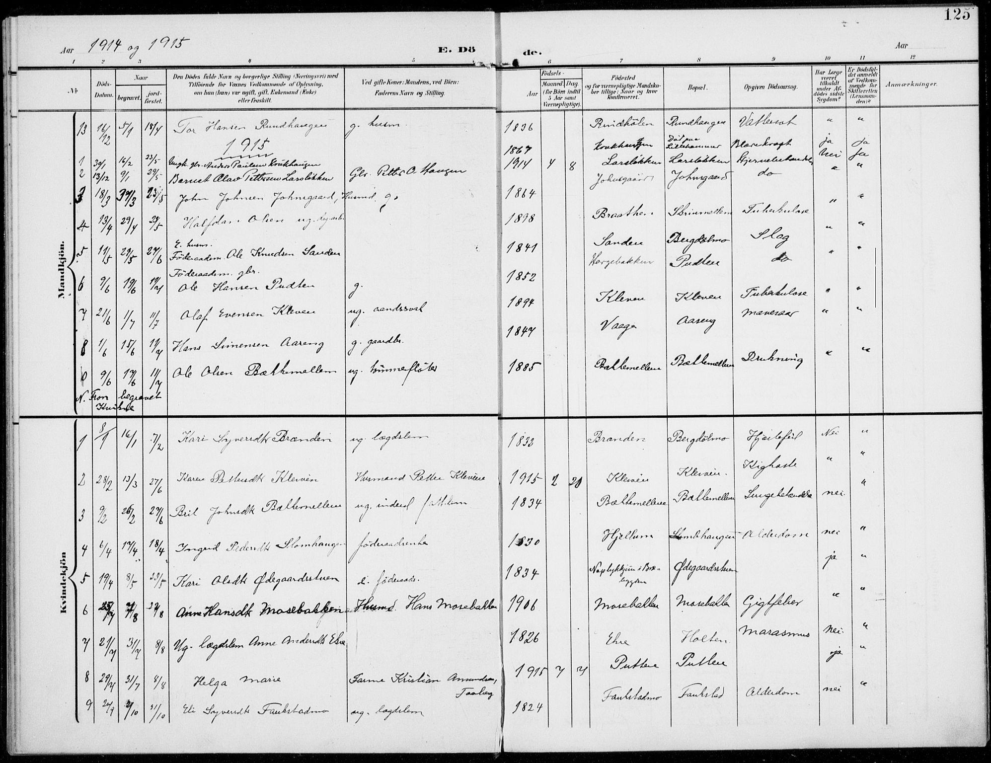 SAH, Sel prestekontor, Ministerialbok nr. 1, 1905-1922, s. 125