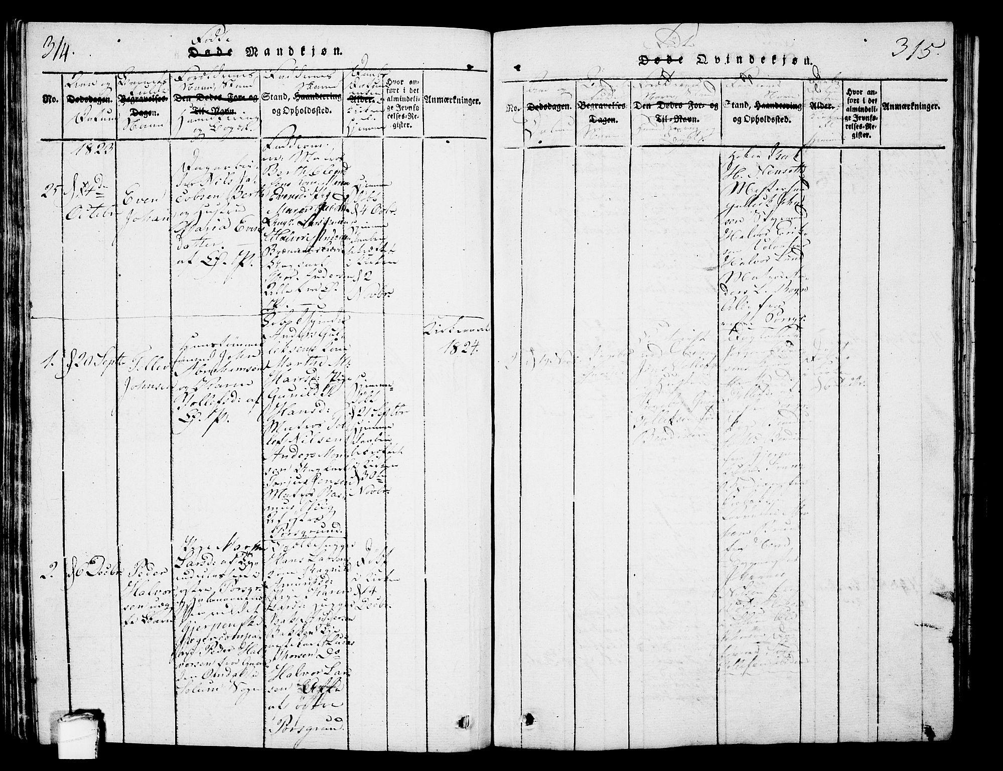 SAKO, Porsgrunn kirkebøker , G/Gb/L0001: Klokkerbok nr. II 1, 1817-1828, s. 314-315