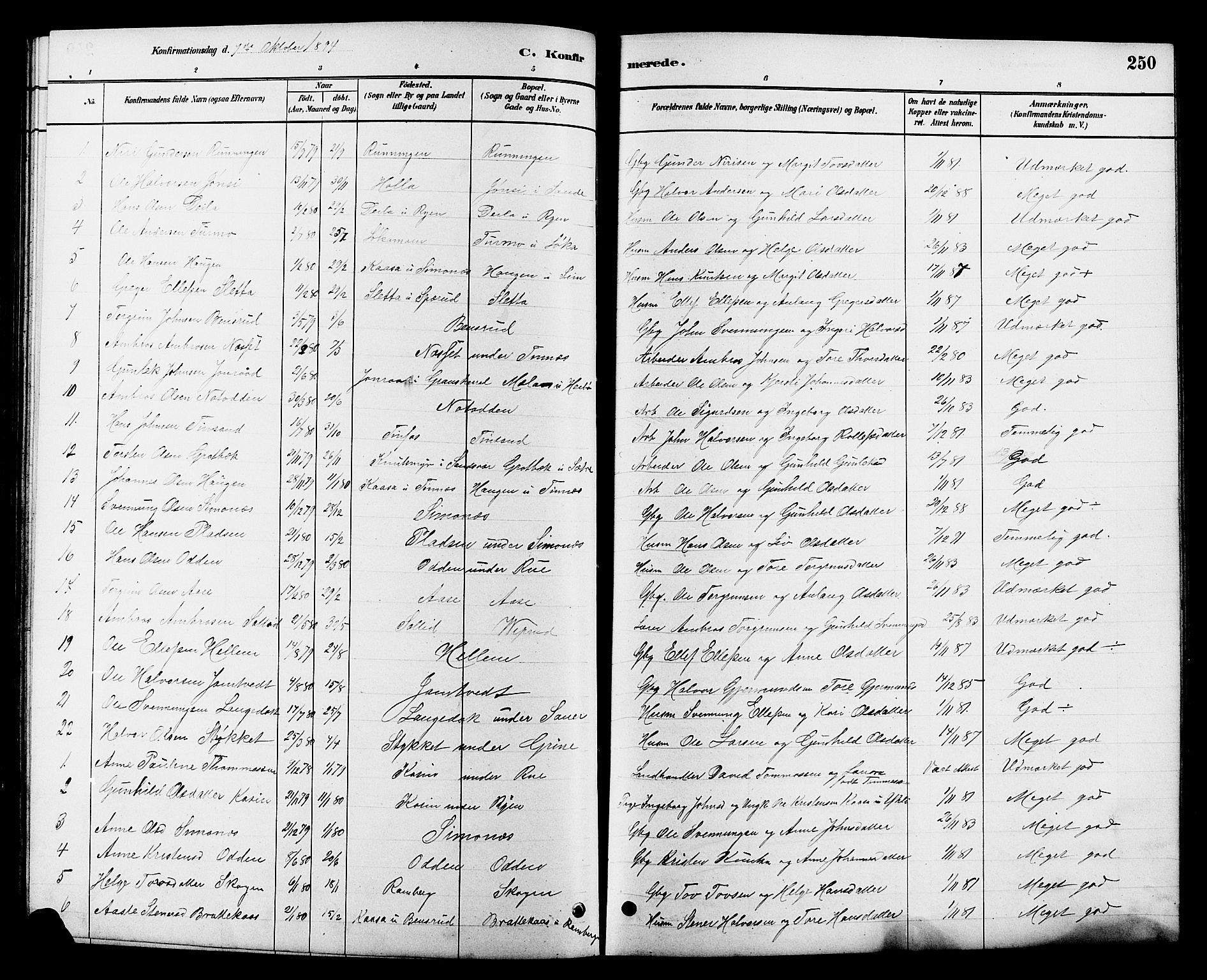 SAKO, Heddal kirkebøker, G/Ga/L0002: Klokkerbok nr. I 2, 1879-1908, s. 250