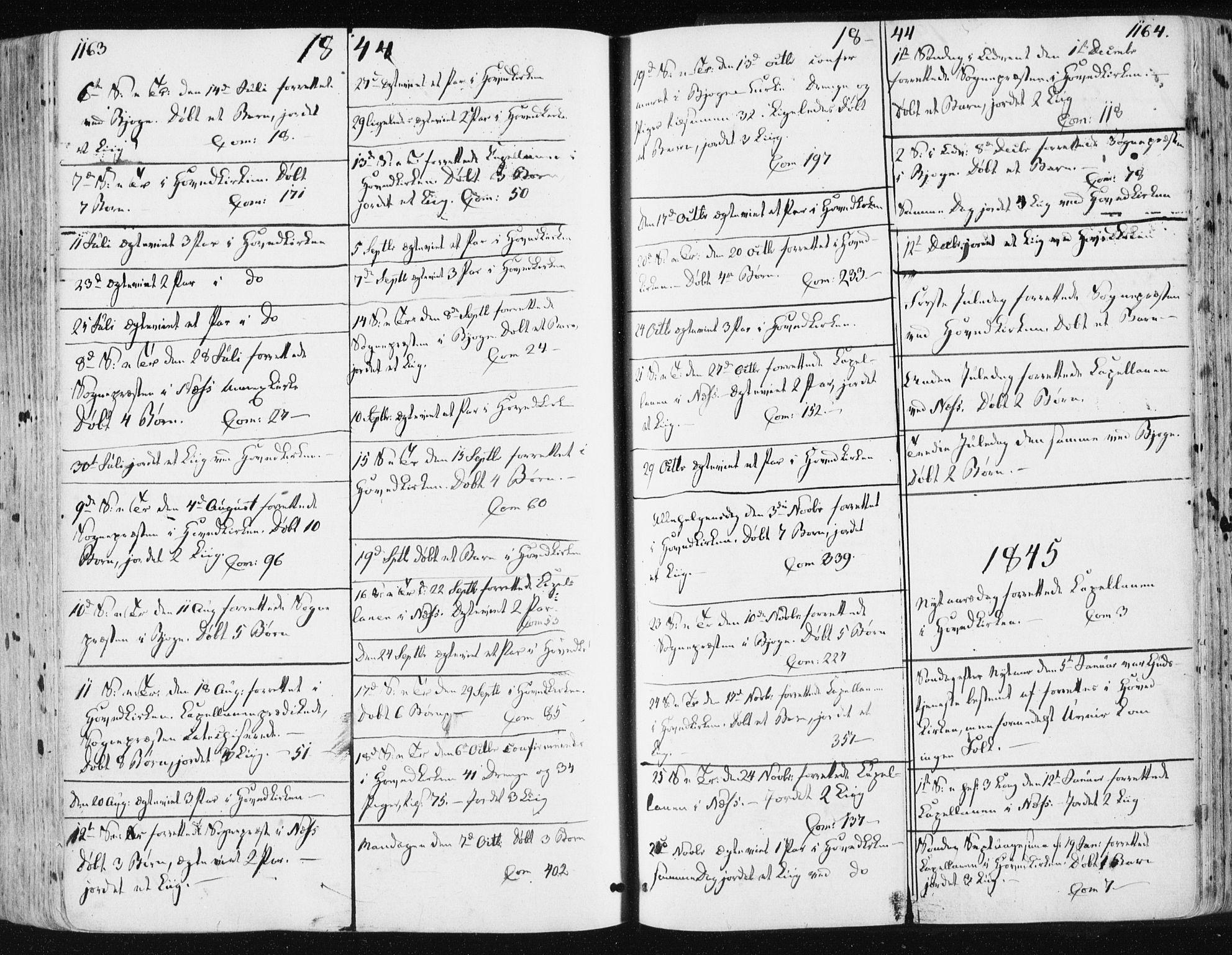 SAT, Ministerialprotokoller, klokkerbøker og fødselsregistre - Sør-Trøndelag, 659/L0736: Ministerialbok nr. 659A06, 1842-1856, s. 1163-1164