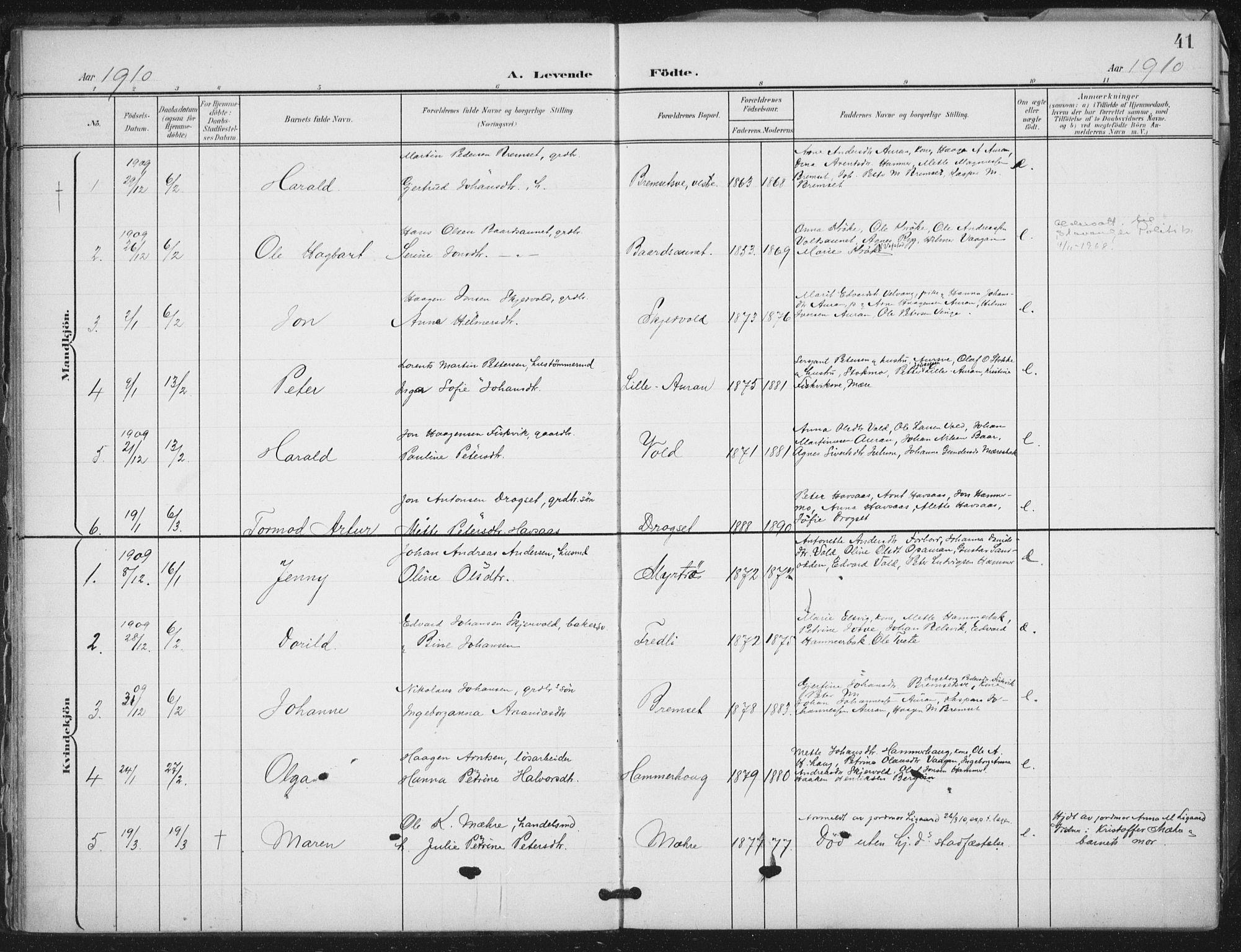 SAT, Ministerialprotokoller, klokkerbøker og fødselsregistre - Nord-Trøndelag, 712/L0101: Ministerialbok nr. 712A02, 1901-1916, s. 41