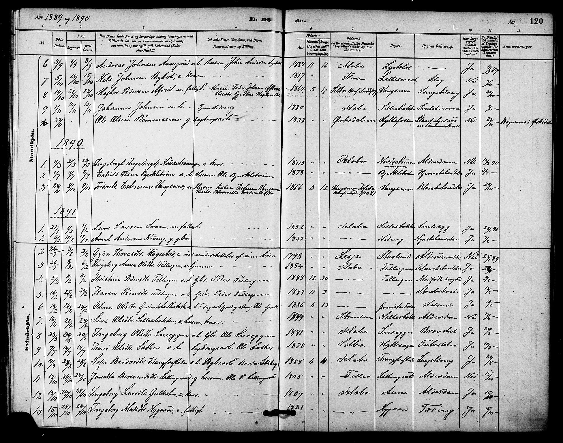 SAT, Ministerialprotokoller, klokkerbøker og fødselsregistre - Sør-Trøndelag, 618/L0444: Ministerialbok nr. 618A07, 1880-1898, s. 120