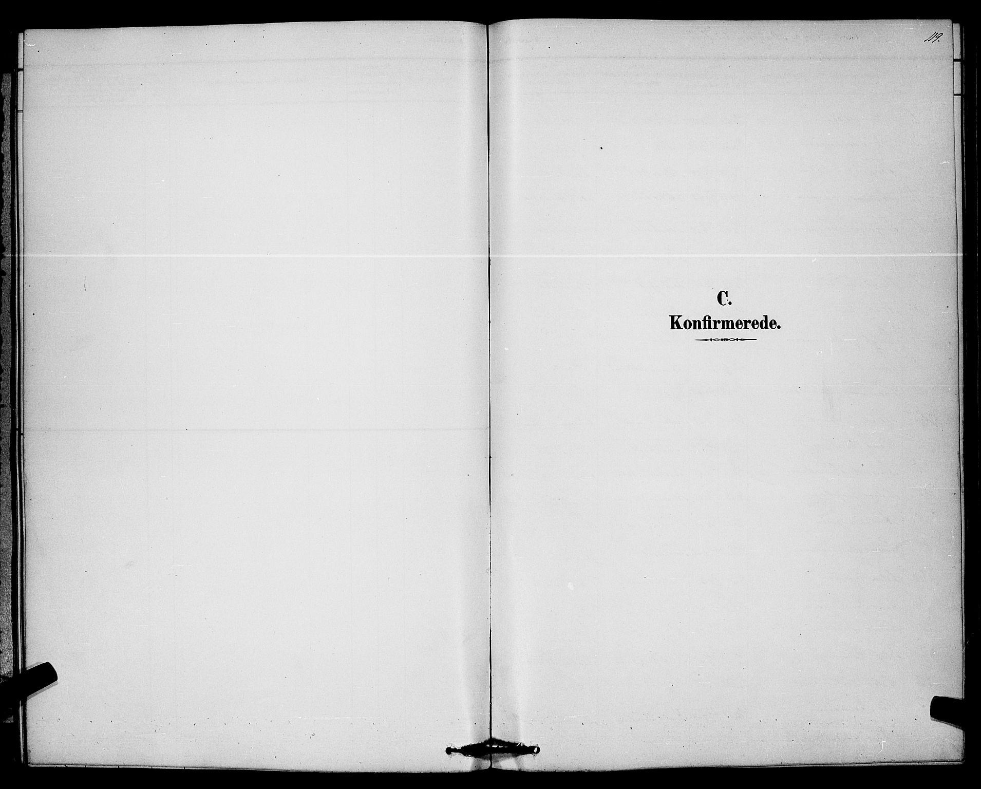SAKO, Bø kirkebøker, G/Ga/L0005: Klokkerbok nr. 5, 1883-1897, s. 119