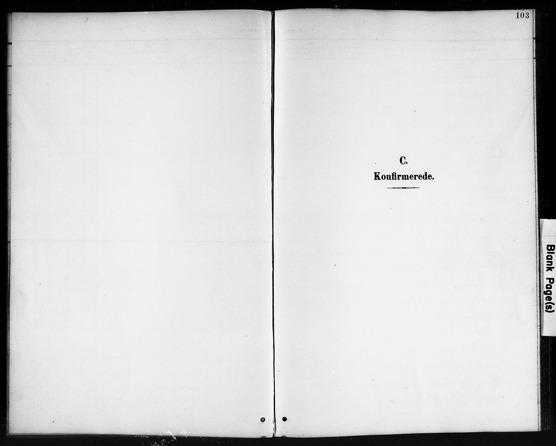 SAK, Lyngdal sokneprestkontor, F/Fb/Fbc/L0005: Klokkerbok nr. B 5, 1897-1913, s. 103