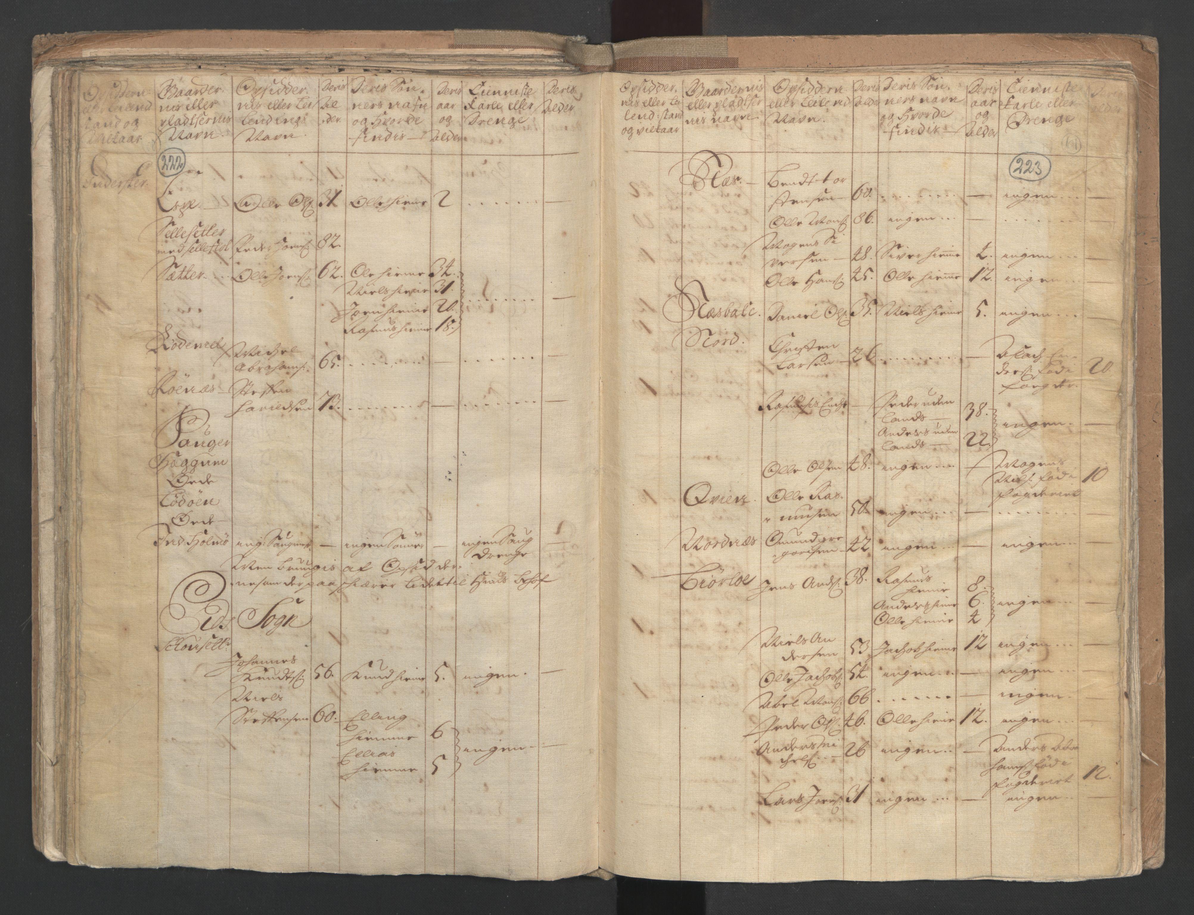 RA, Manntallet 1701, nr. 9: Sunnfjord fogderi, Nordfjord fogderi og Svanø birk, 1701, s. 222-223