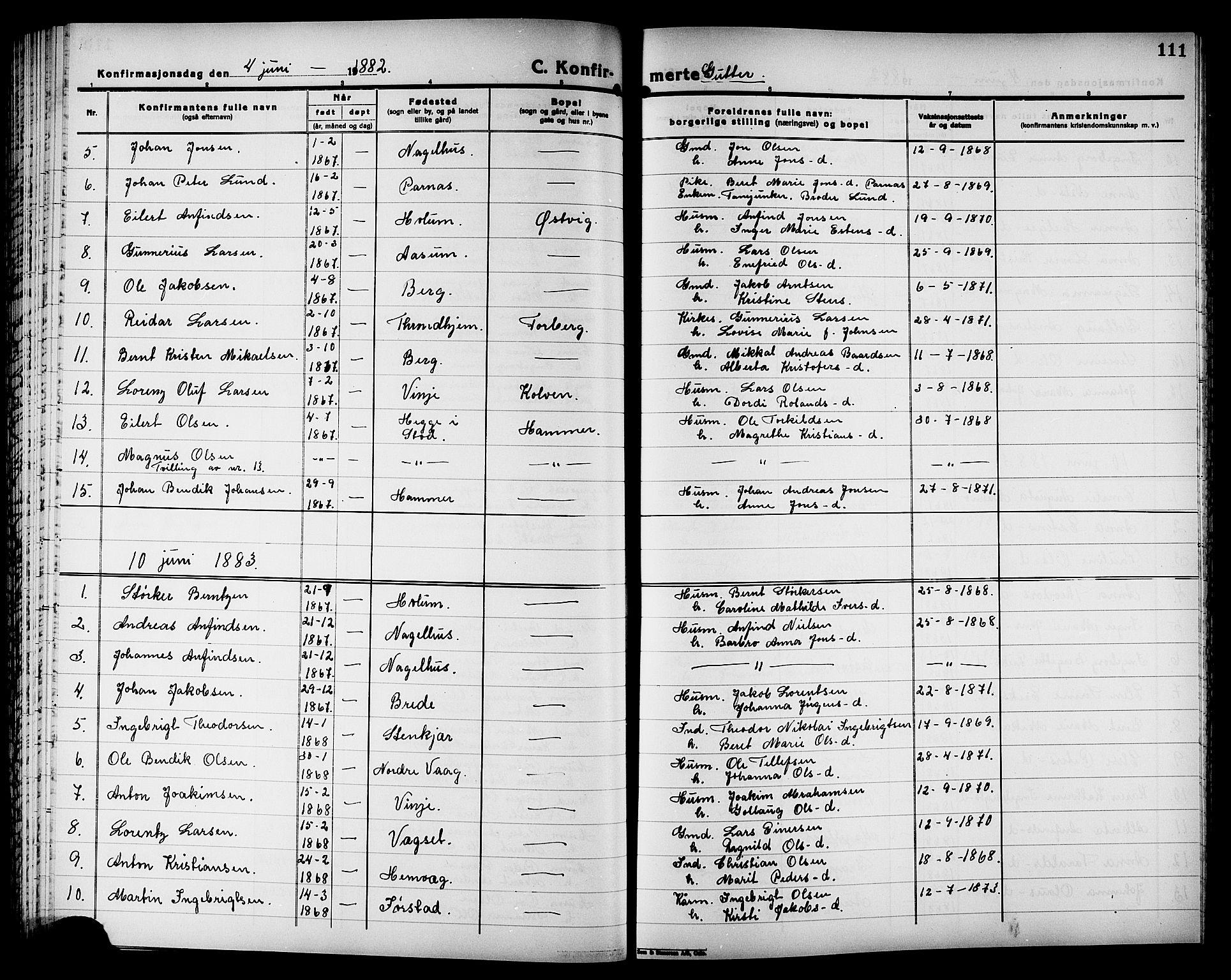 SAT, Ministerialprotokoller, klokkerbøker og fødselsregistre - Nord-Trøndelag, 749/L0486: Ministerialbok nr. 749D02, 1873-1887, s. 111