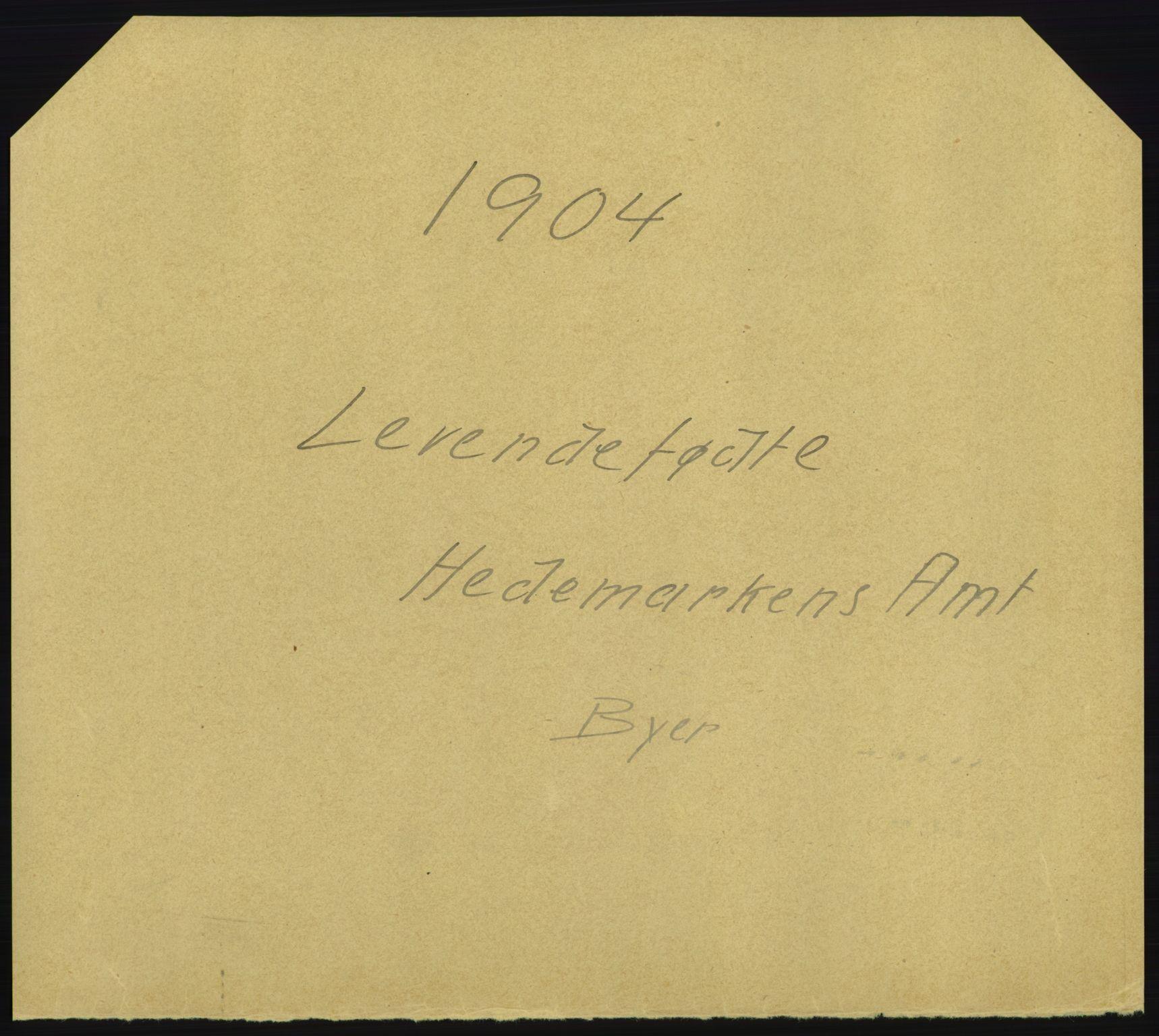 RA, Statistisk sentralbyrå, Sosiodemografiske emner, Befolkning, D/Df/Dfa/Dfab/L0005: Hedemarkens amt: Fødte, gifte, døde, 1904