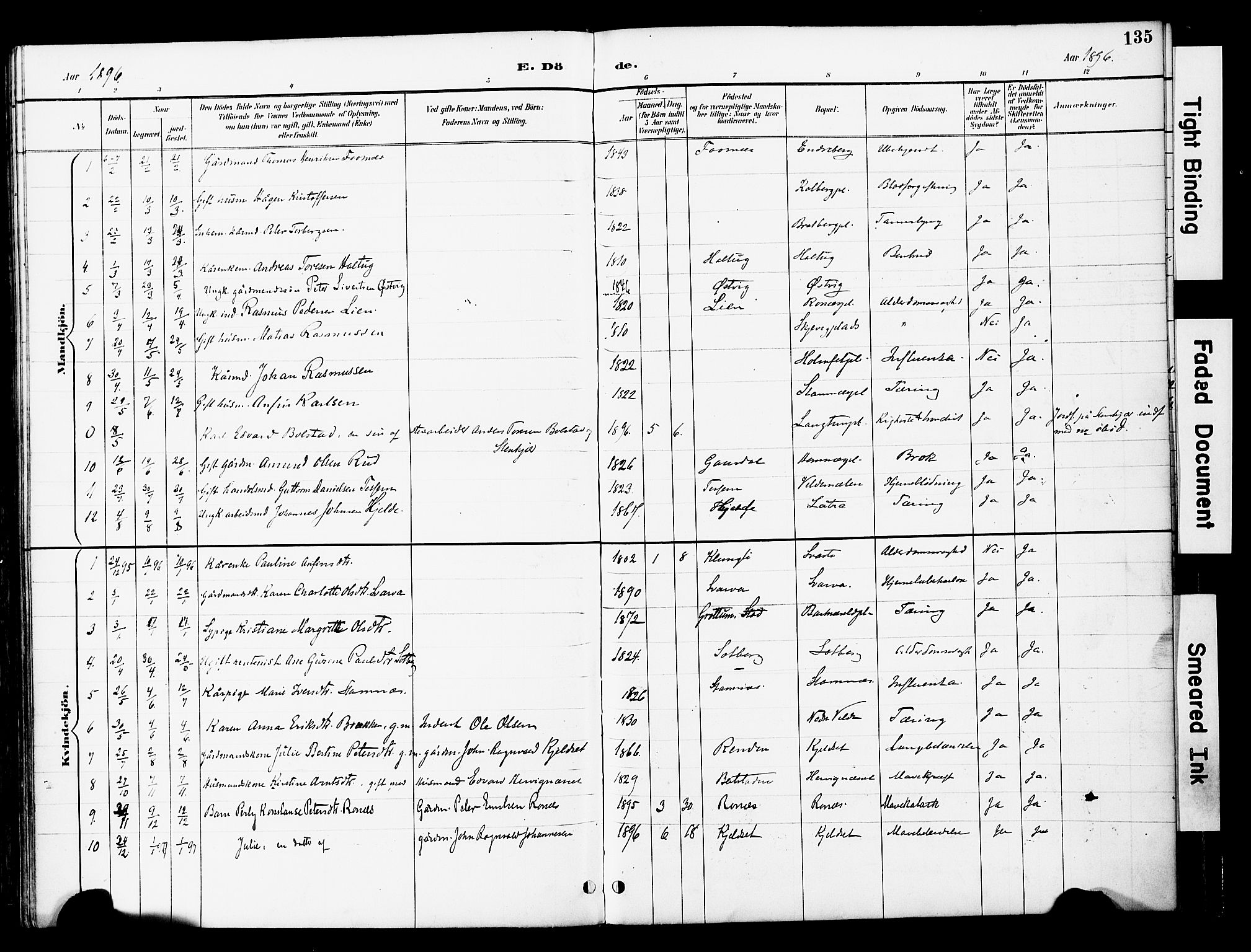 SAT, Ministerialprotokoller, klokkerbøker og fødselsregistre - Nord-Trøndelag, 741/L0396: Ministerialbok nr. 741A10, 1889-1901, s. 135
