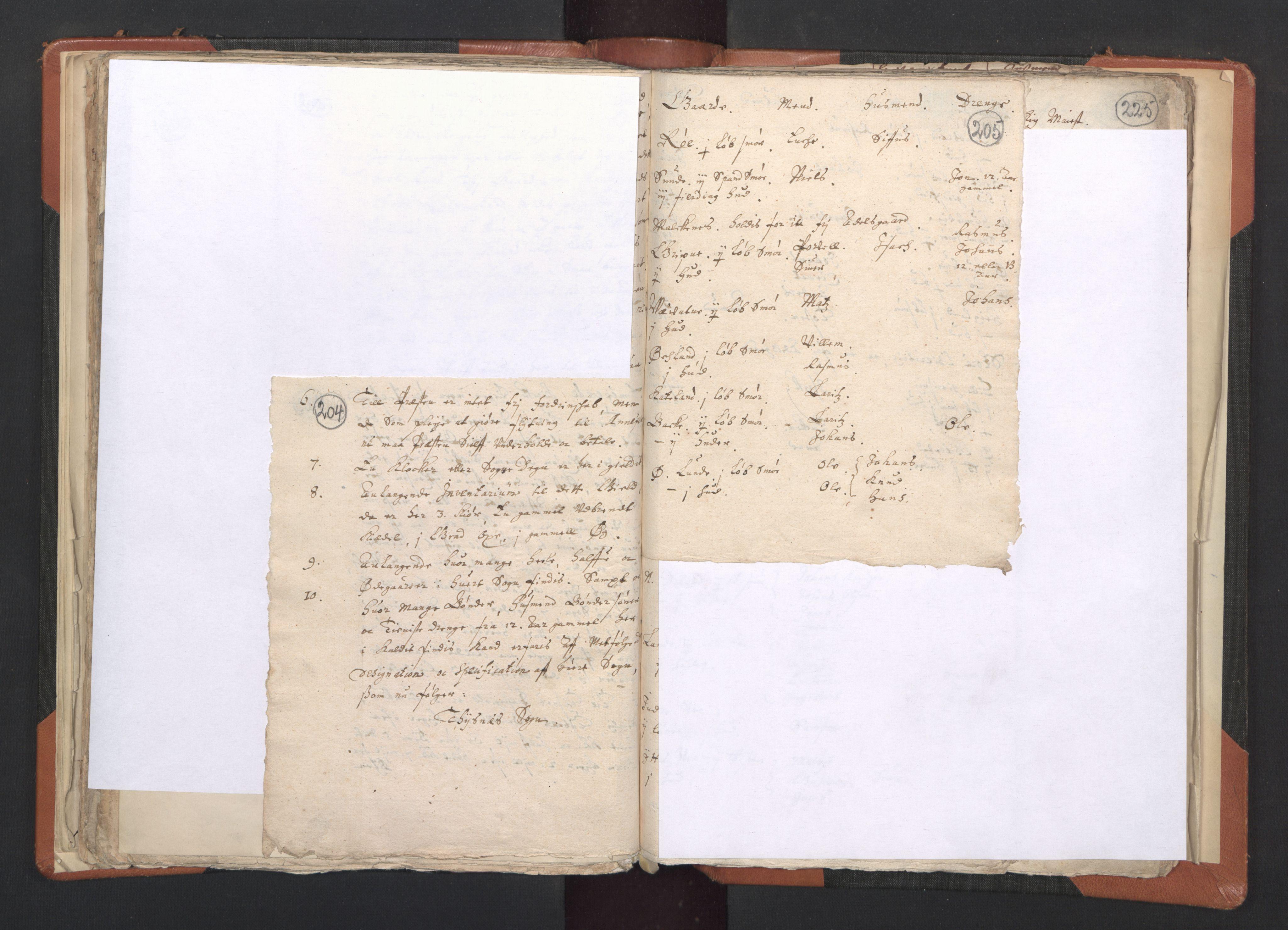 RA, Sogneprestenes manntall 1664-1666, nr. 20: Sunnhordland prosti, 1664-1666, s. 204-205