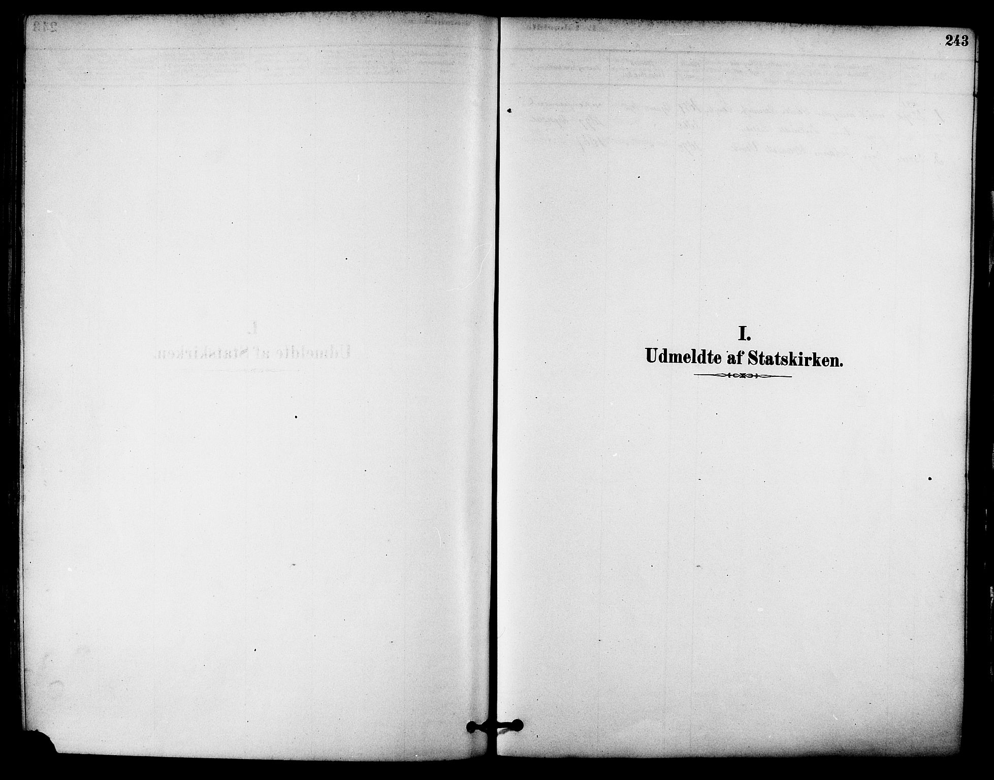 SAT, Ministerialprotokoller, klokkerbøker og fødselsregistre - Sør-Trøndelag, 612/L0378: Ministerialbok nr. 612A10, 1878-1897, s. 243