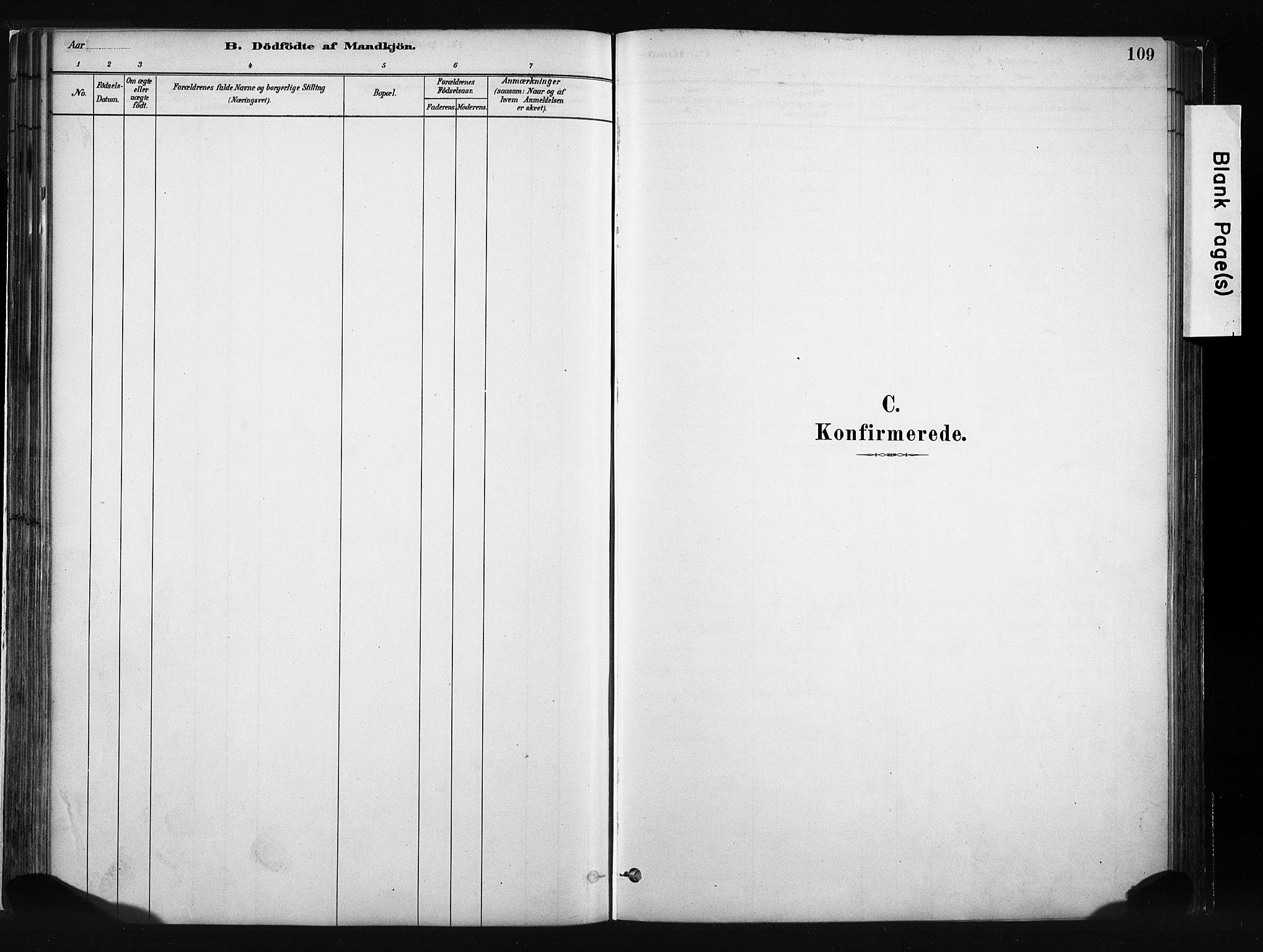 SAH, Vang prestekontor, Valdres, Ministerialbok nr. 8, 1882-1910, s. 109