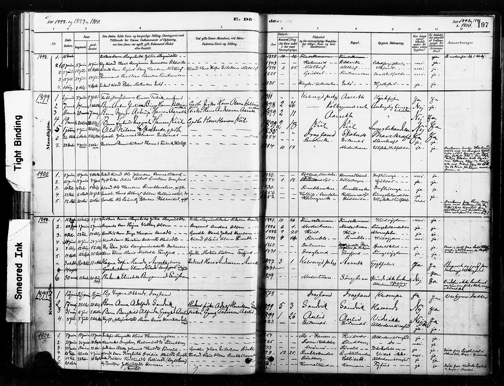 SAT, Ministerialprotokoller, klokkerbøker og fødselsregistre - Nord-Trøndelag, 789/L0705: Ministerialbok nr. 789A01, 1878-1910, s. 197