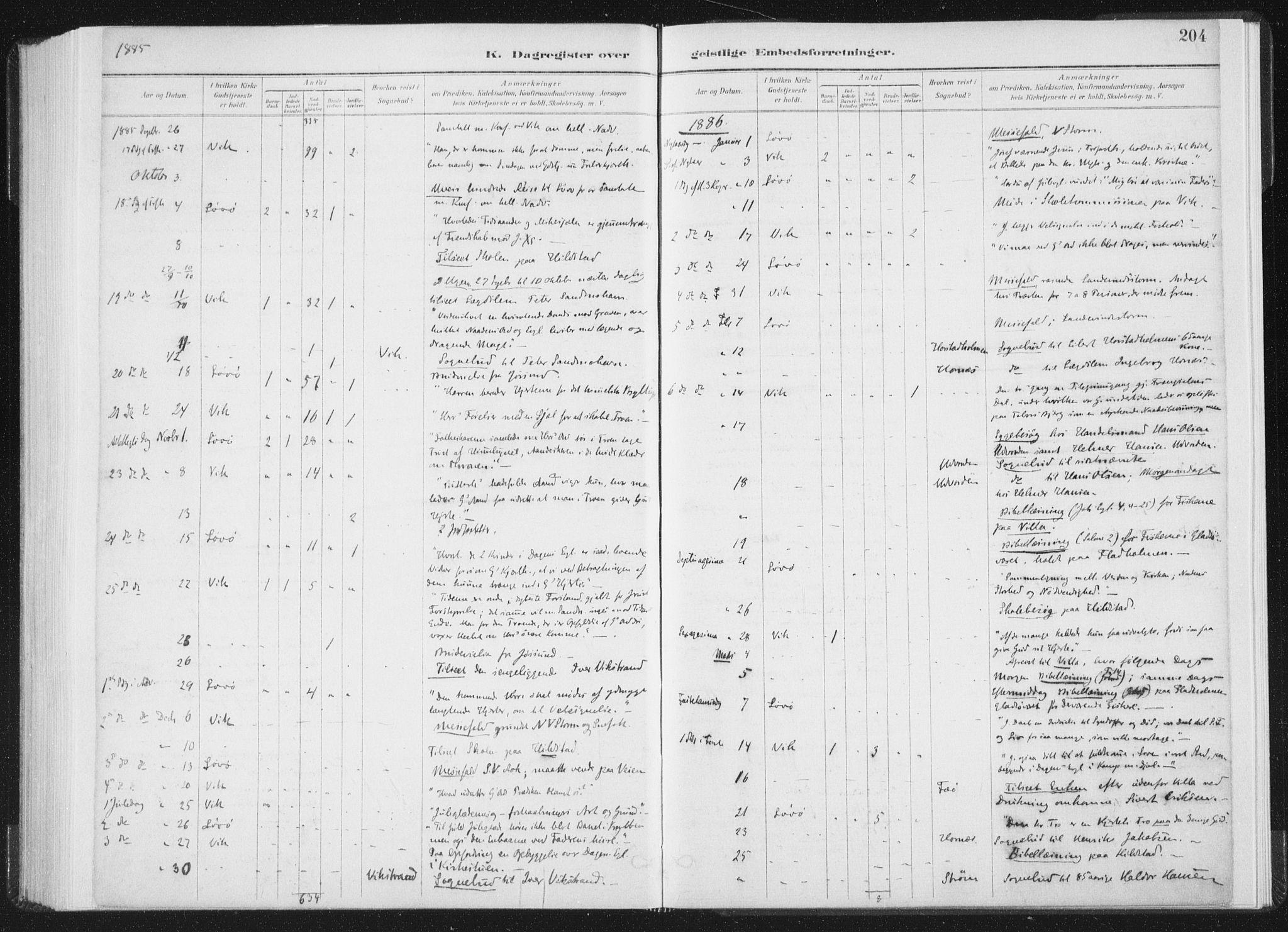 SAT, Ministerialprotokoller, klokkerbøker og fødselsregistre - Nord-Trøndelag, 771/L0597: Ministerialbok nr. 771A04, 1885-1910, s. 204