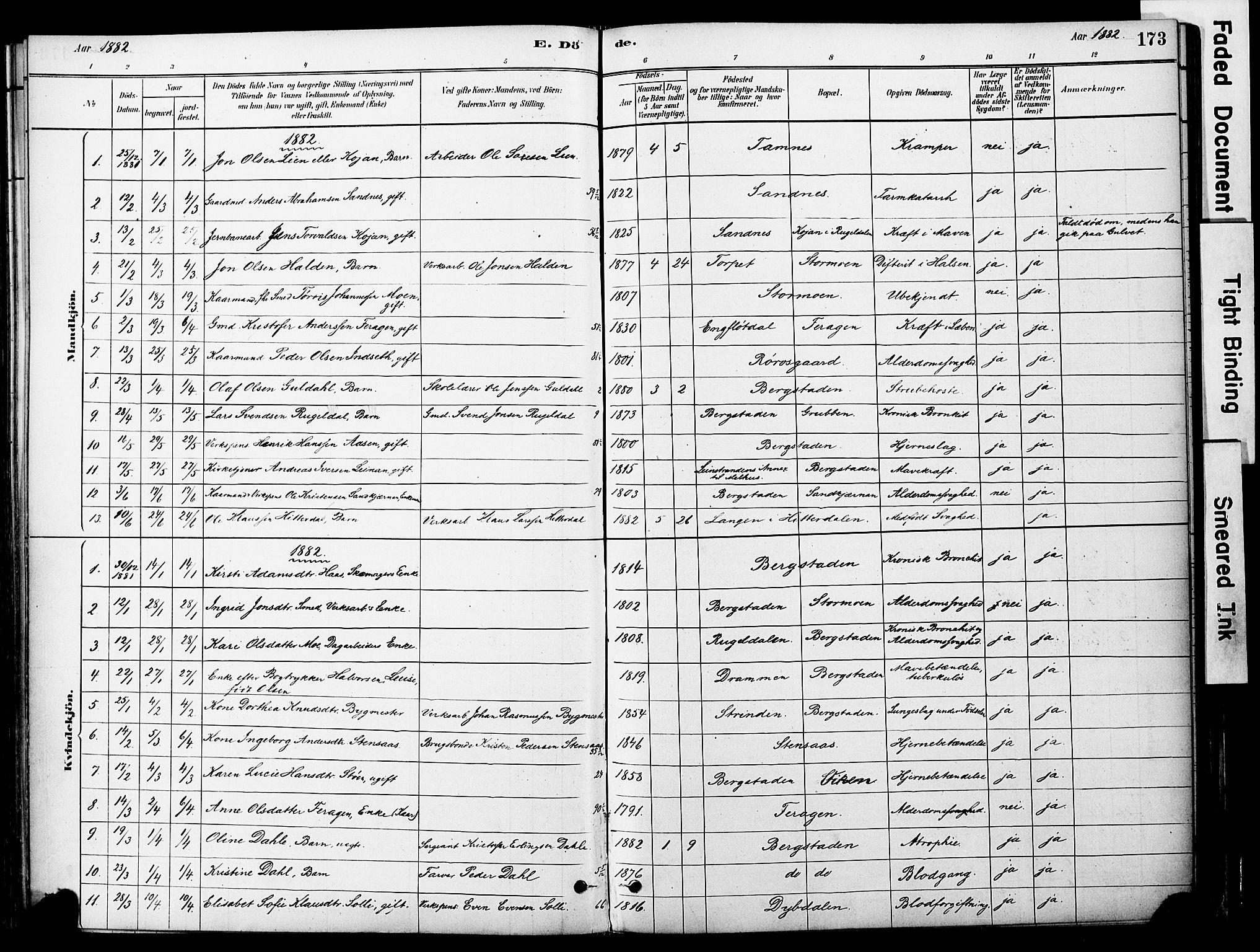SAT, Ministerialprotokoller, klokkerbøker og fødselsregistre - Sør-Trøndelag, 681/L0933: Ministerialbok nr. 681A11, 1879-1890, s. 173