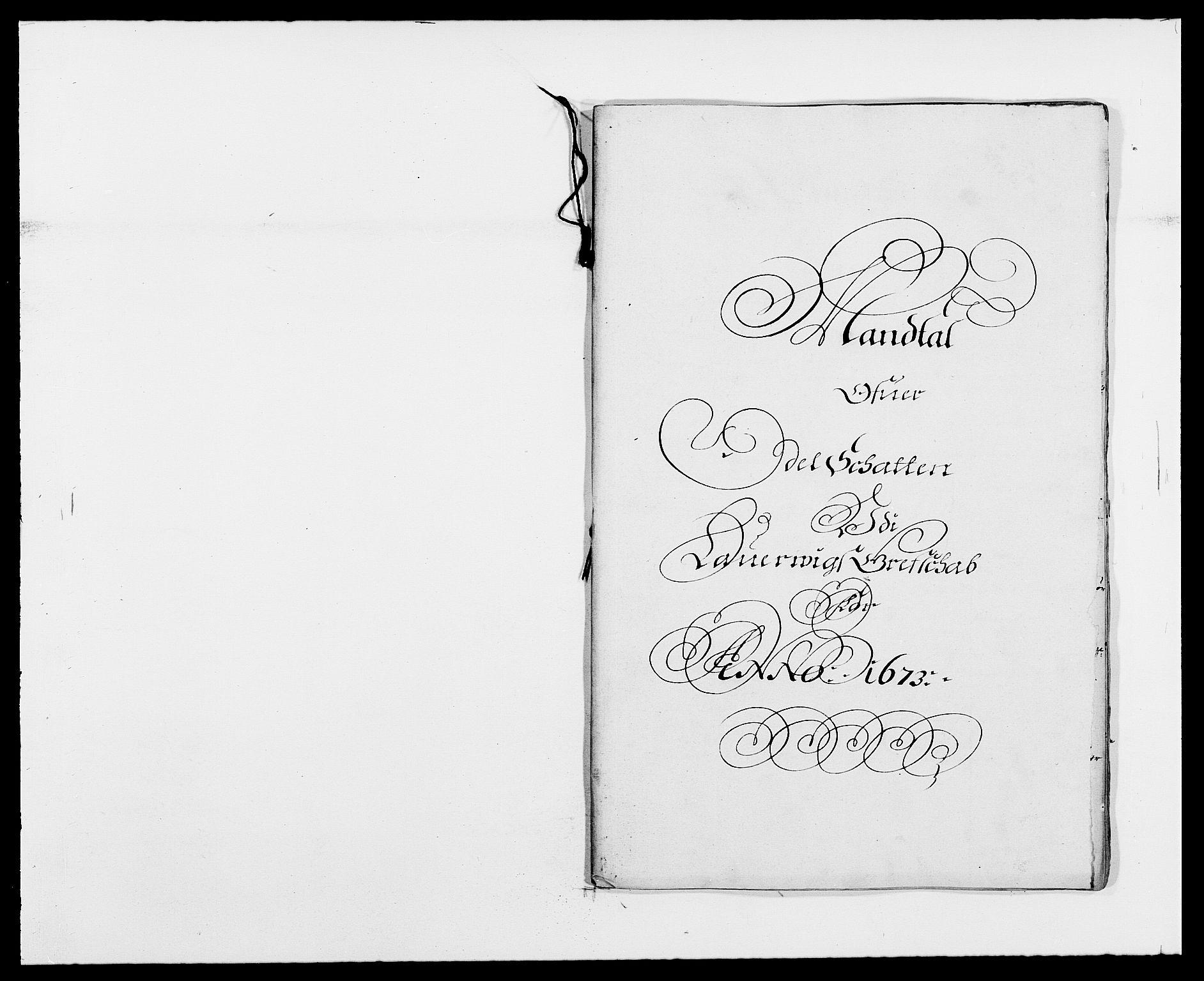 RA, Rentekammeret inntil 1814, Reviderte regnskaper, Fogderegnskap, R33/L1966: Fogderegnskap Larvik grevskap, 1672-1674, s. 141