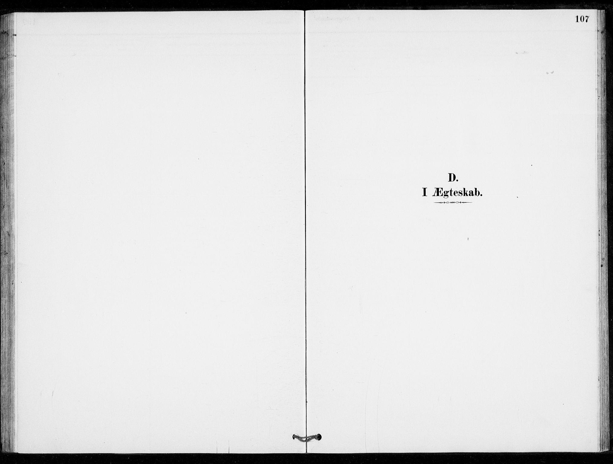 SAKO, Nore kirkebøker, G/Gc/L0003: Klokkerbok nr. III 3, 1881-1941, s. 107