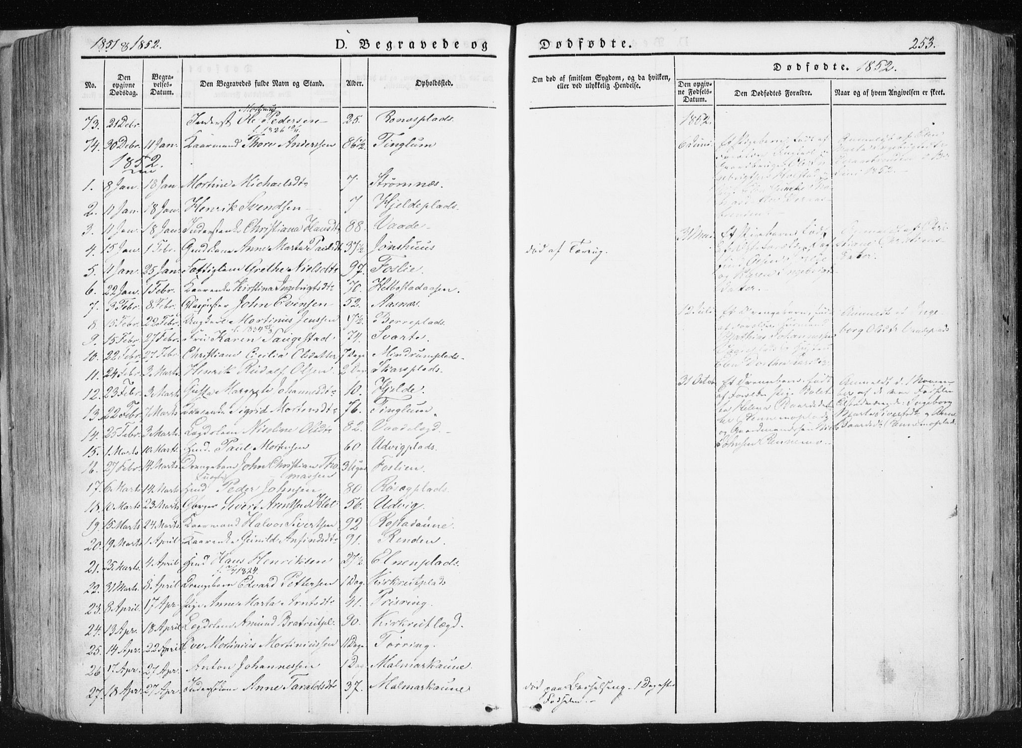 SAT, Ministerialprotokoller, klokkerbøker og fødselsregistre - Nord-Trøndelag, 741/L0393: Ministerialbok nr. 741A07, 1849-1863, s. 253