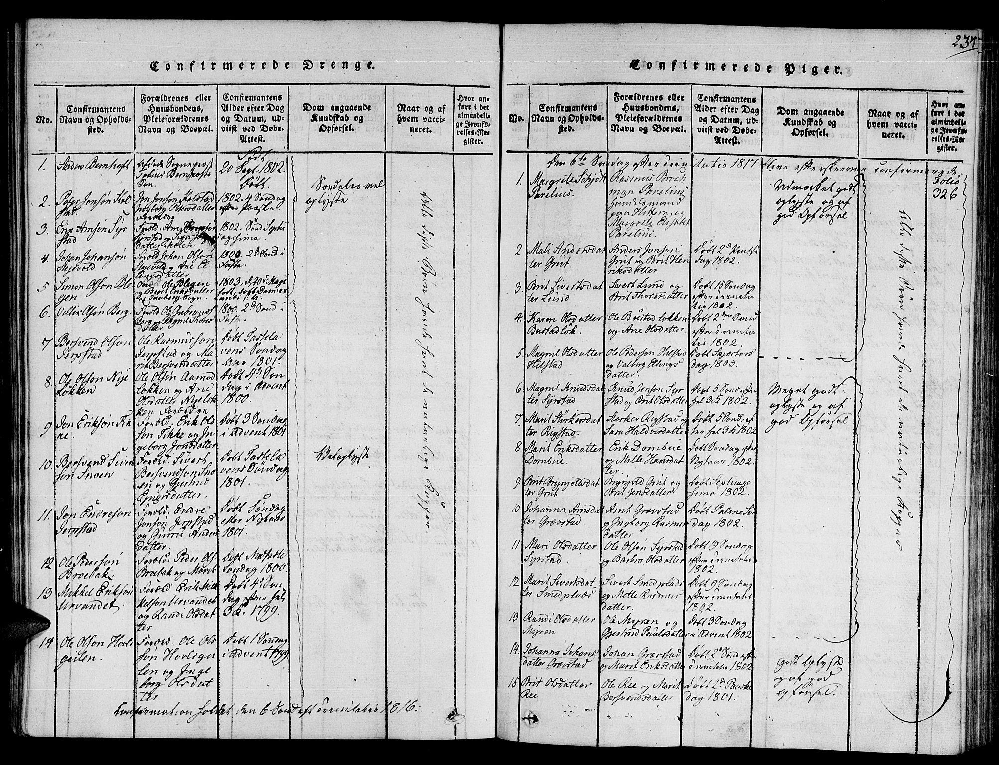 SAT, Ministerialprotokoller, klokkerbøker og fødselsregistre - Sør-Trøndelag, 672/L0853: Ministerialbok nr. 672A06 /1, 1816-1829, s. 234