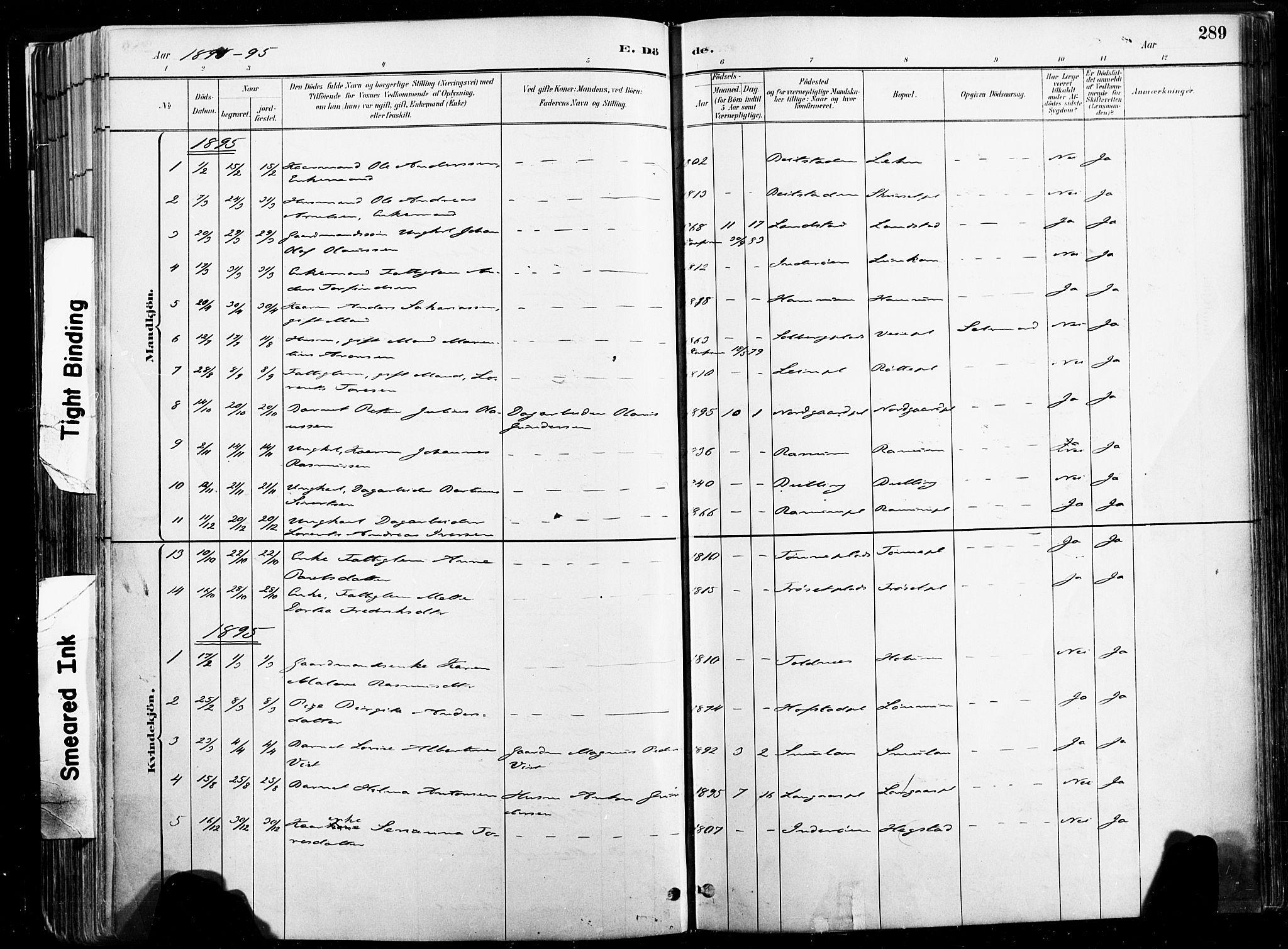 SAT, Ministerialprotokoller, klokkerbøker og fødselsregistre - Nord-Trøndelag, 735/L0351: Ministerialbok nr. 735A10, 1884-1908, s. 289