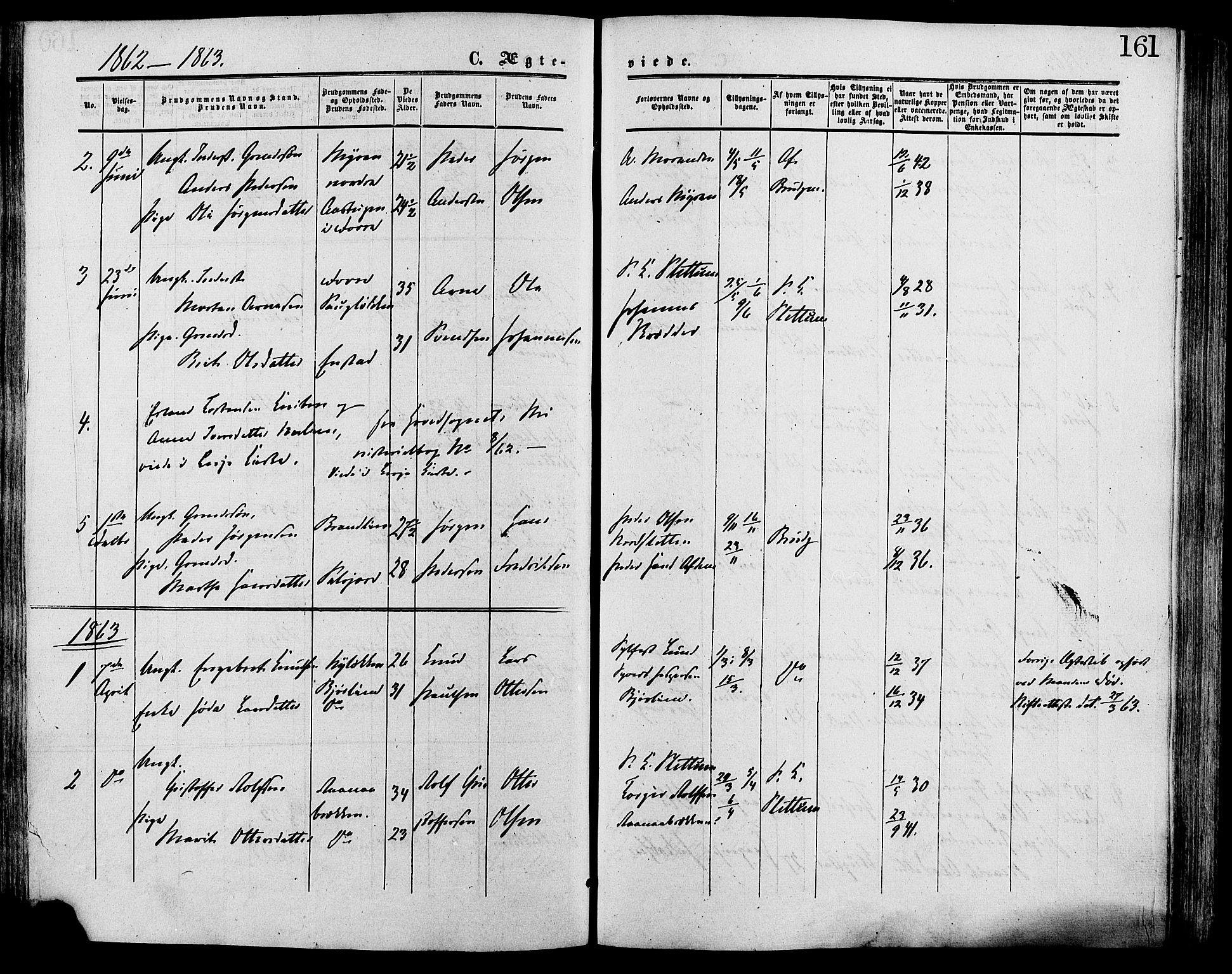 SAH, Lesja prestekontor, Ministerialbok nr. 9, 1854-1889, s. 161