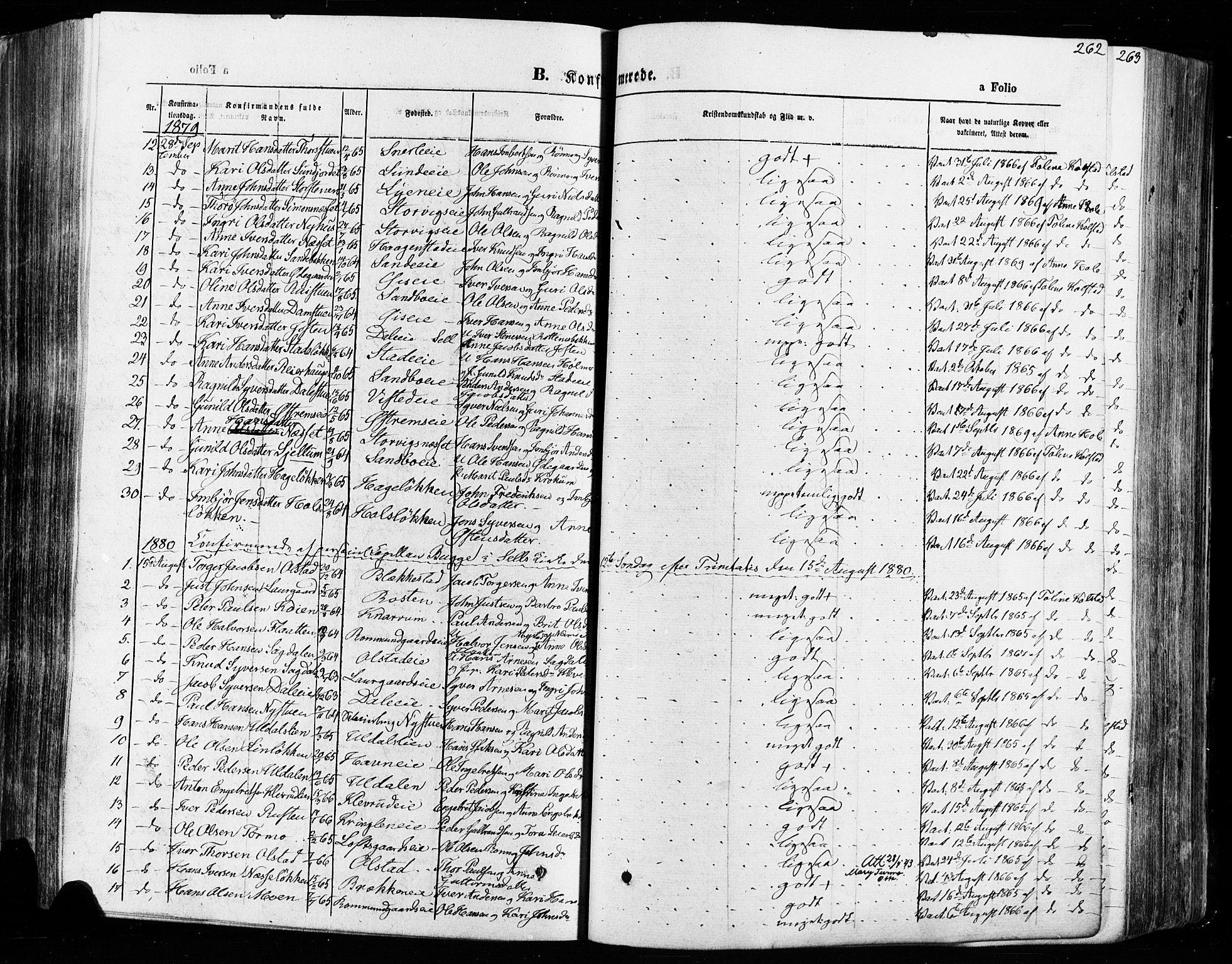 SAH, Vågå prestekontor, Ministerialbok nr. 7 /1, 1872-1886, s. 262