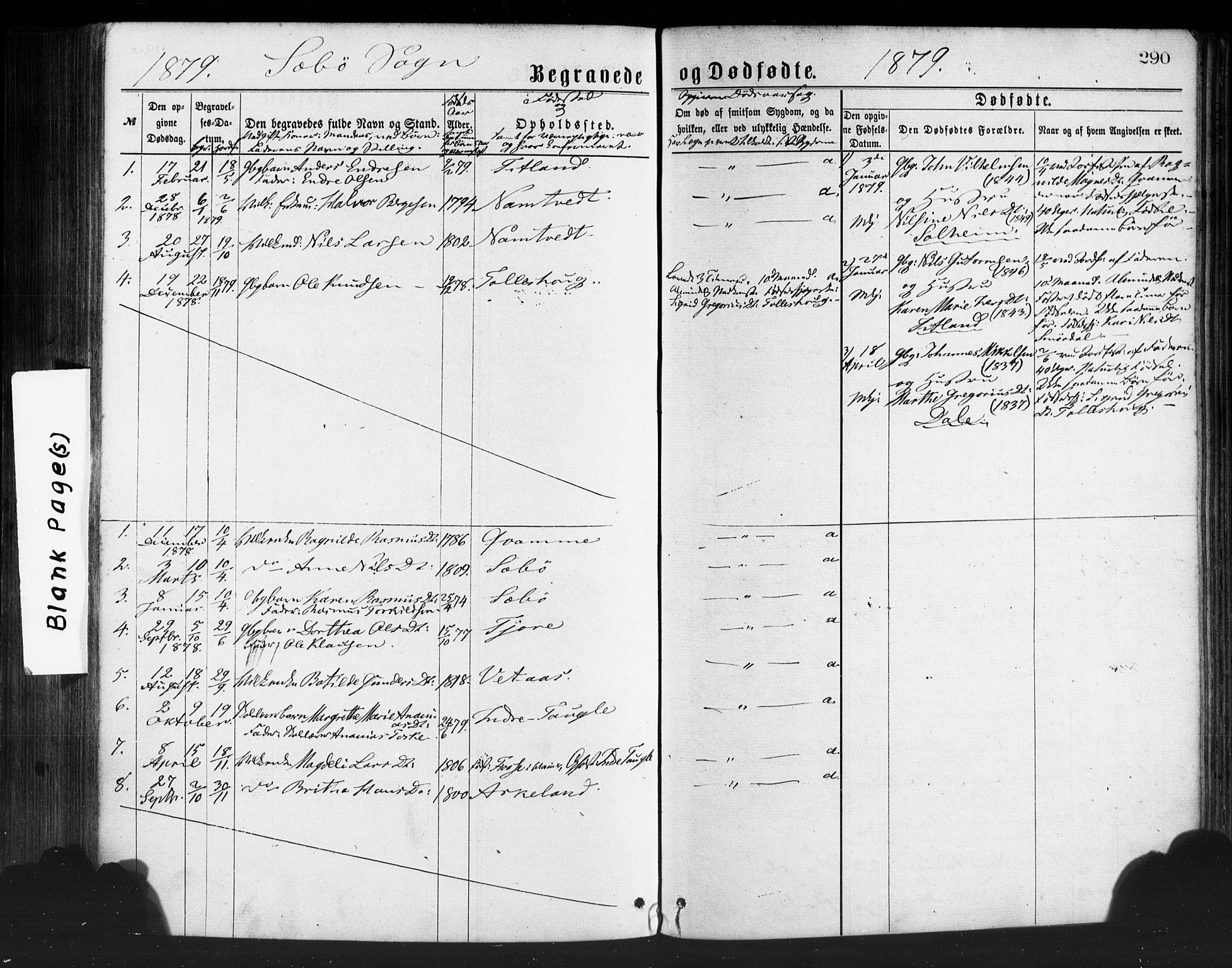 SAB, Manger sokneprestembete, H/Haa: Ministerialbok nr. A 8, 1871-1880, s. 290