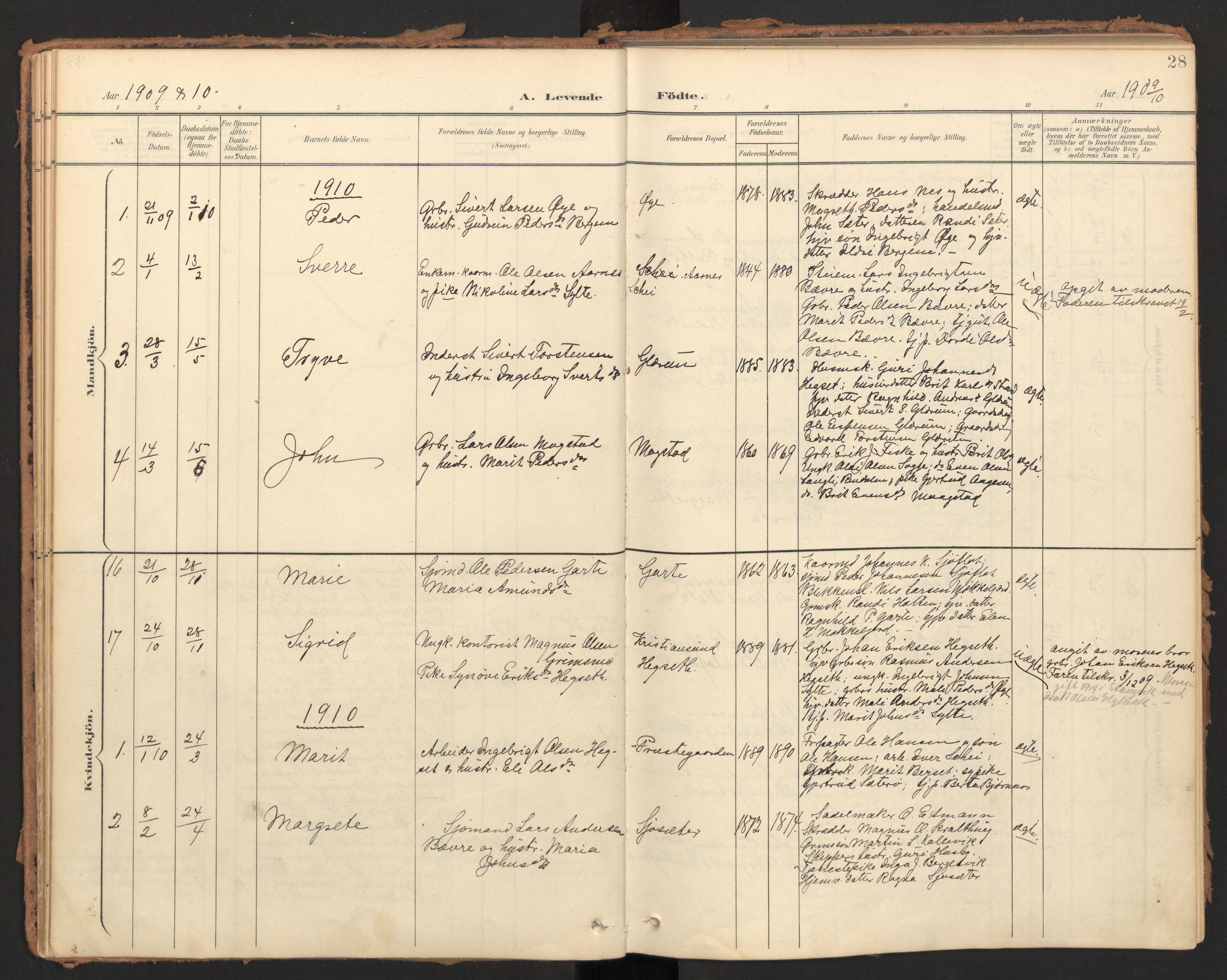 SAT, Ministerialprotokoller, klokkerbøker og fødselsregistre - Møre og Romsdal, 595/L1048: Ministerialbok nr. 595A10, 1900-1917, s. 28
