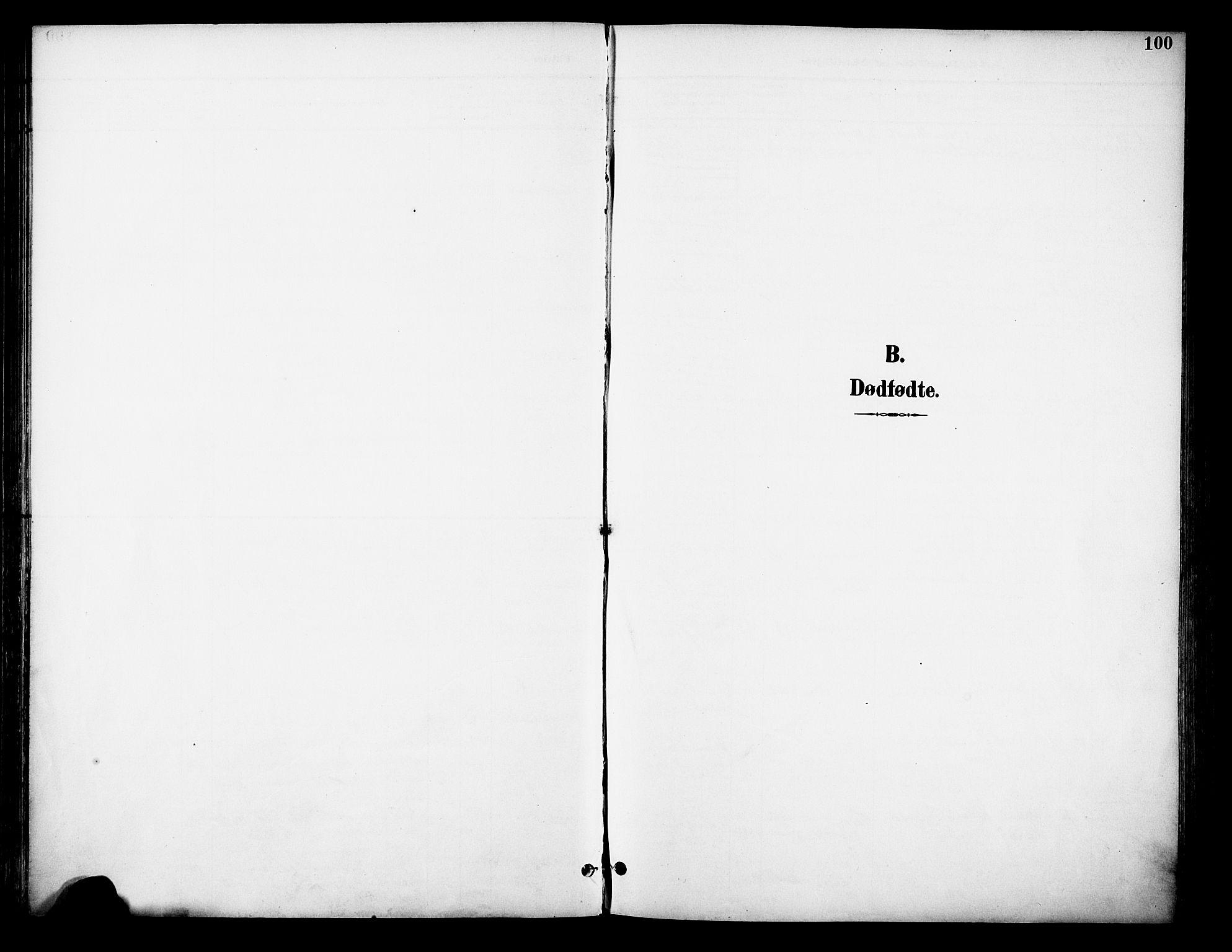 SAH, Østre Toten prestekontor, Ministerialbok nr. 9, 1897-1913, s. 100