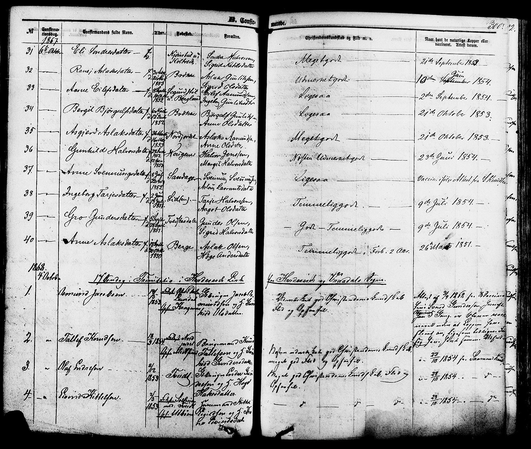 SAKO, Kviteseid kirkebøker, F/Fa/L0007: Ministerialbok nr. I 7, 1859-1881, s. 300