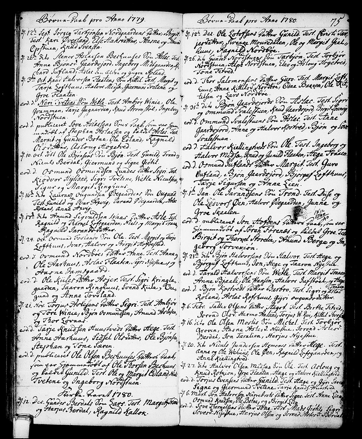 SAKO, Vinje kirkebøker, F/Fa/L0002: Ministerialbok nr. I 2, 1767-1814, s. 75