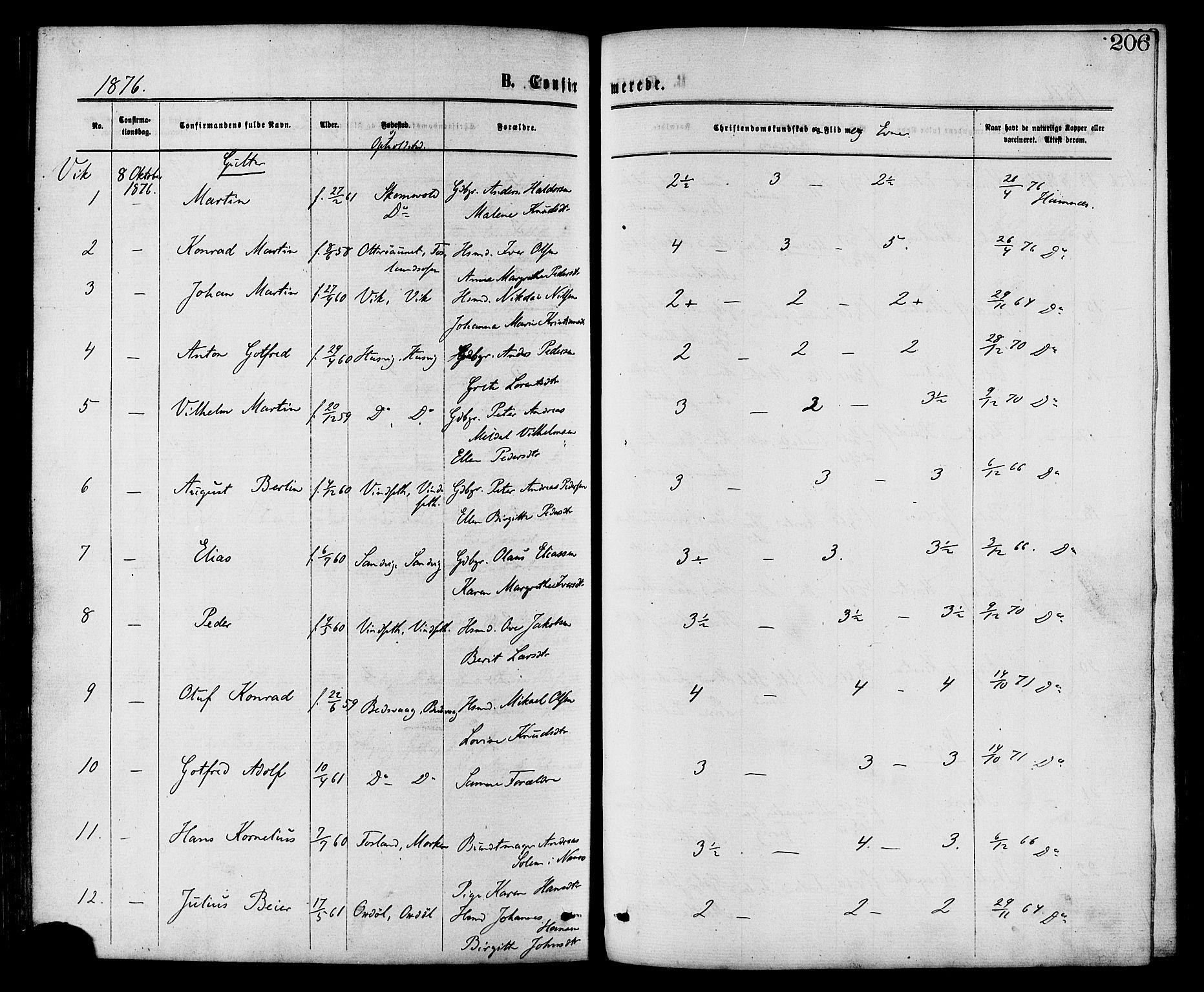 SAT, Ministerialprotokoller, klokkerbøker og fødselsregistre - Nord-Trøndelag, 773/L0616: Ministerialbok nr. 773A07, 1870-1887, s. 206