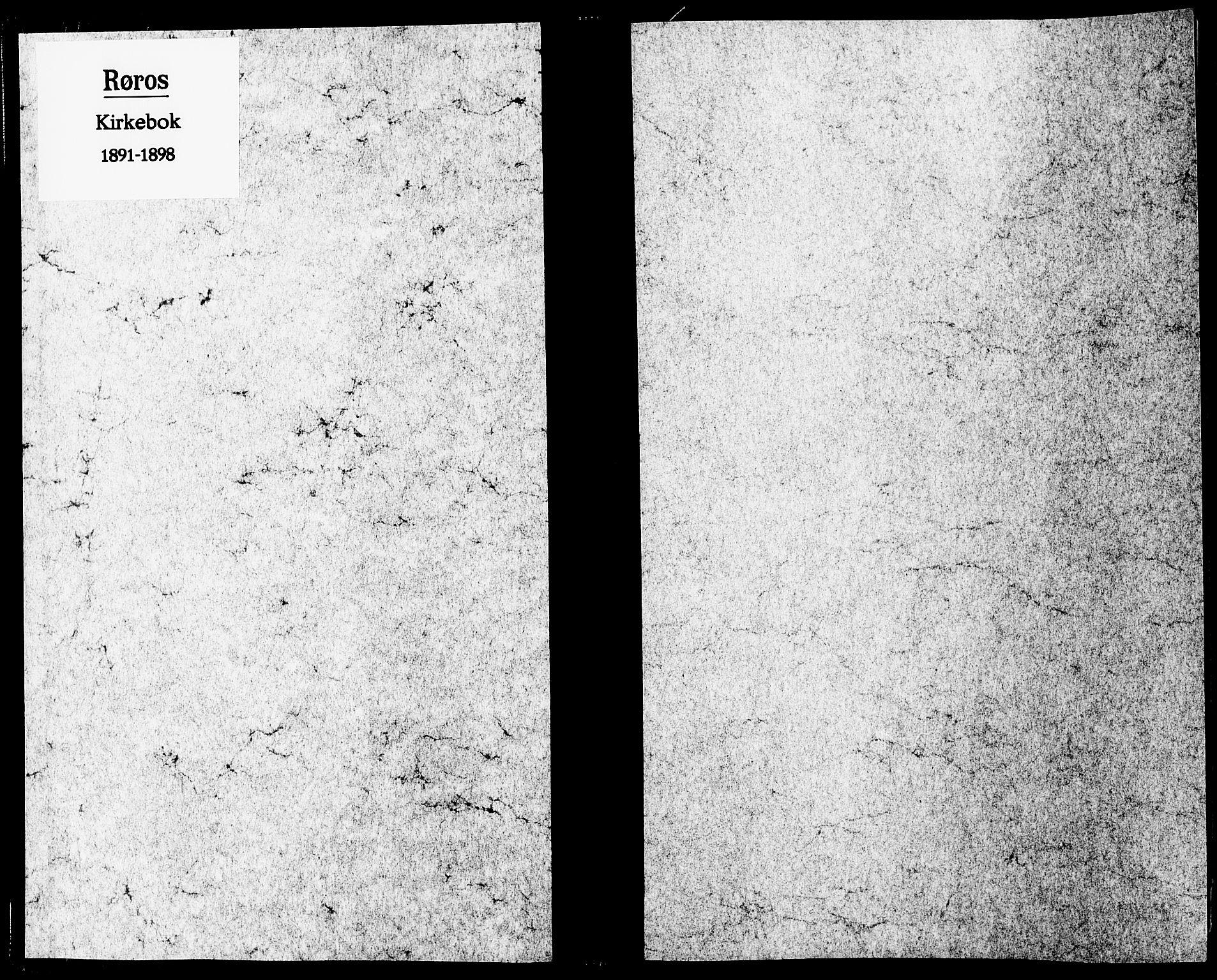 SAT, Ministerialprotokoller, klokkerbøker og fødselsregistre - Sør-Trøndelag, 681/L0935: Ministerialbok nr. 681A13, 1890-1898