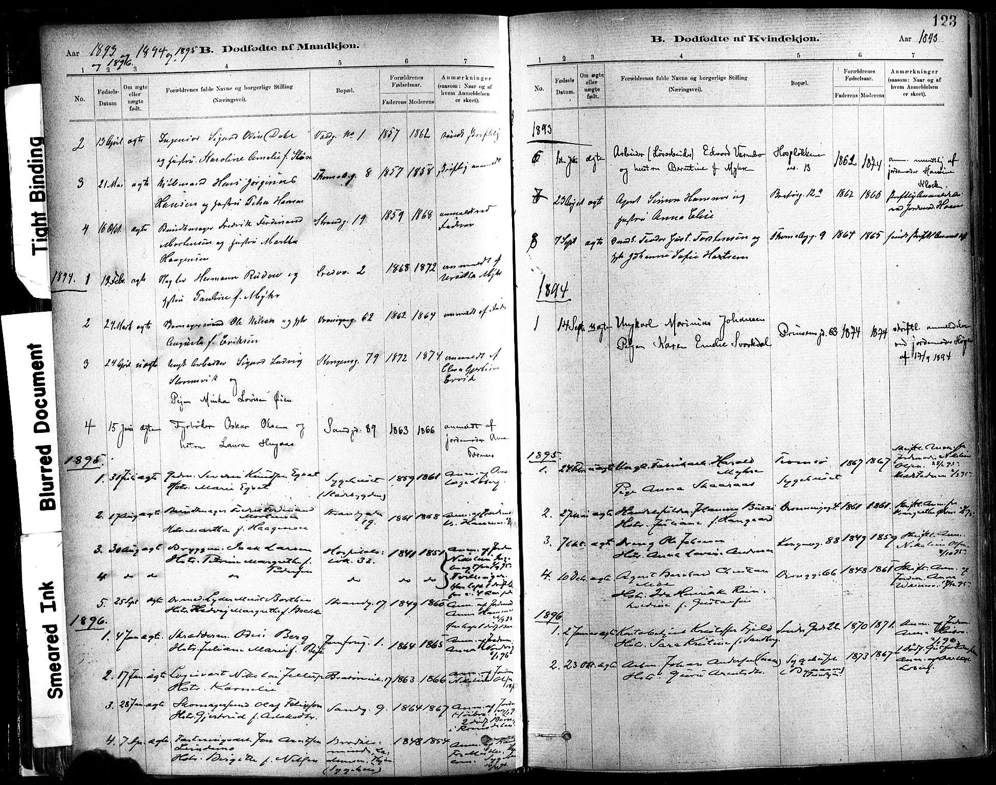 SAT, Ministerialprotokoller, klokkerbøker og fødselsregistre - Sør-Trøndelag, 602/L0119: Ministerialbok nr. 602A17, 1880-1901, s. 123