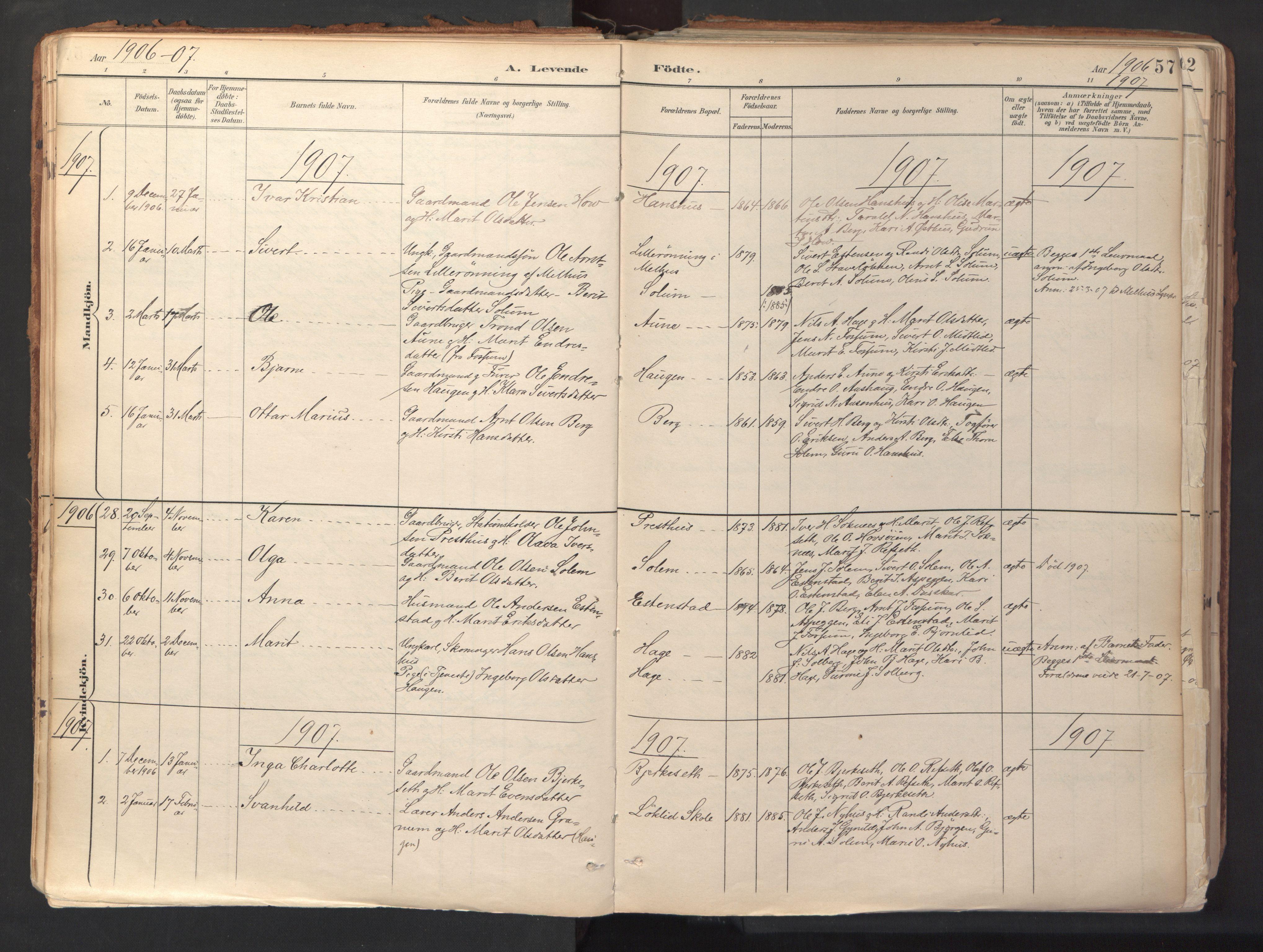 SAT, Ministerialprotokoller, klokkerbøker og fødselsregistre - Sør-Trøndelag, 689/L1041: Ministerialbok nr. 689A06, 1891-1923, s. 57
