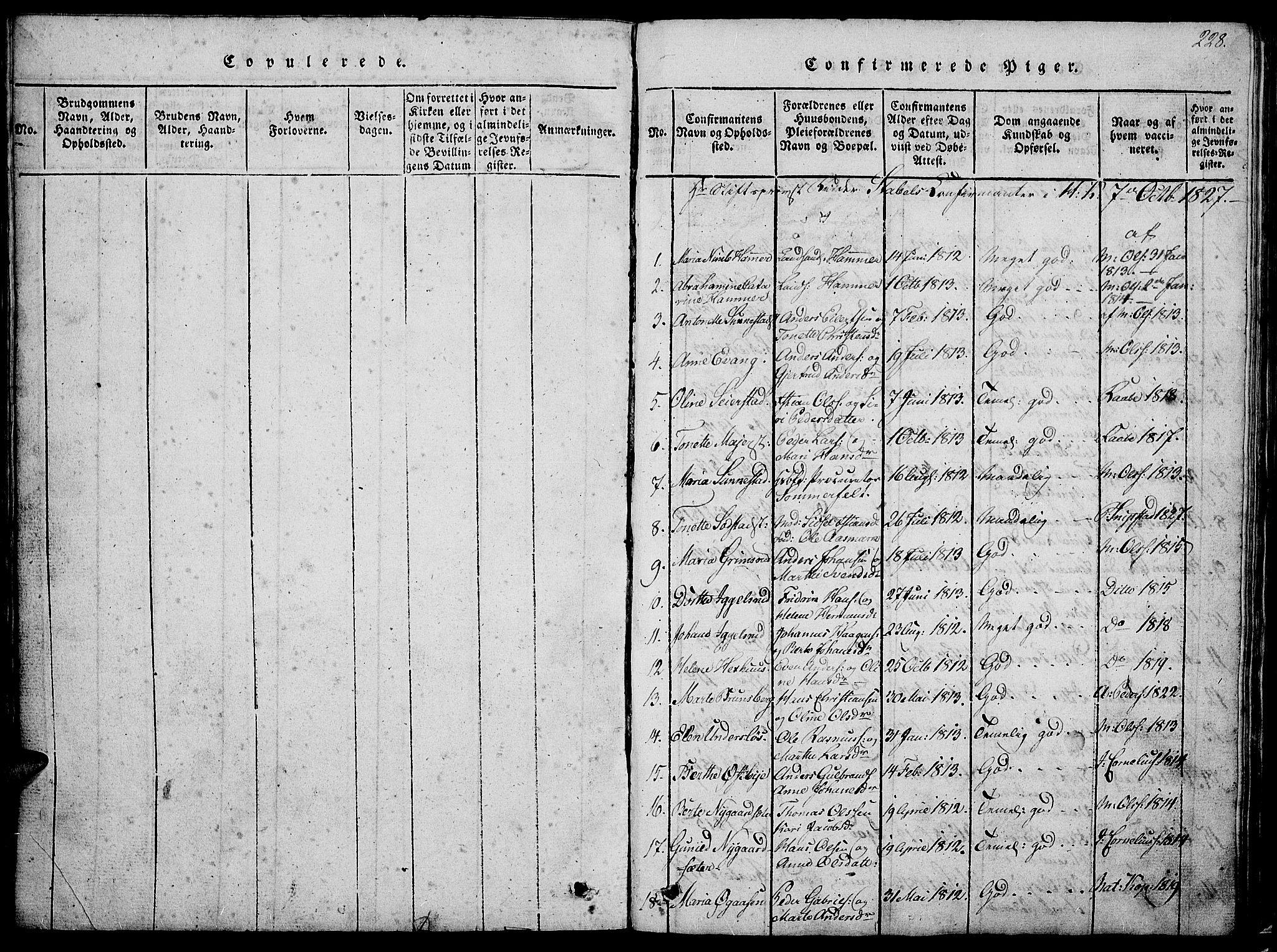 SAH, Østre Toten prestekontor, Klokkerbok nr. 1, 1827-1839, s. 228