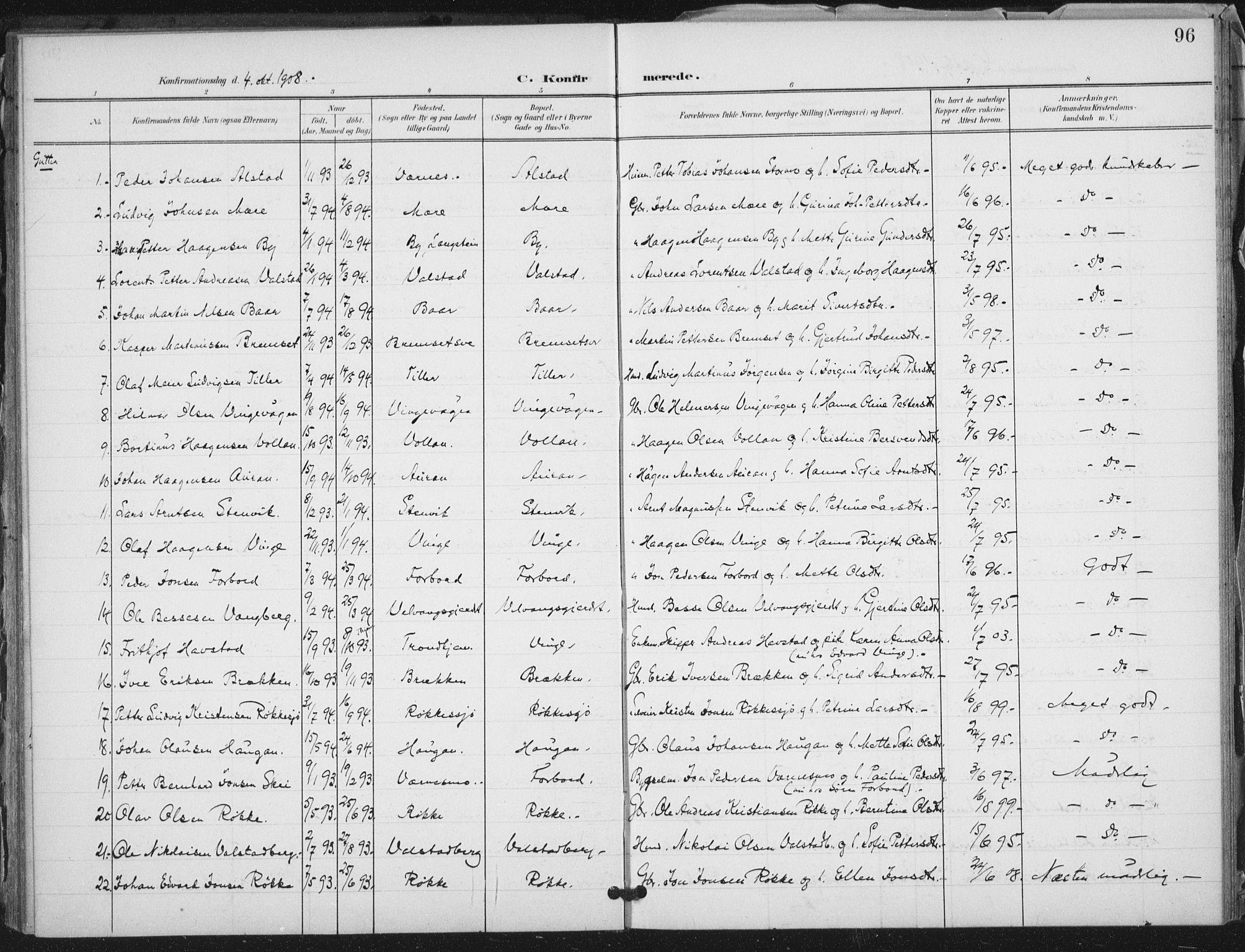 SAT, Ministerialprotokoller, klokkerbøker og fødselsregistre - Nord-Trøndelag, 712/L0101: Ministerialbok nr. 712A02, 1901-1916, s. 96