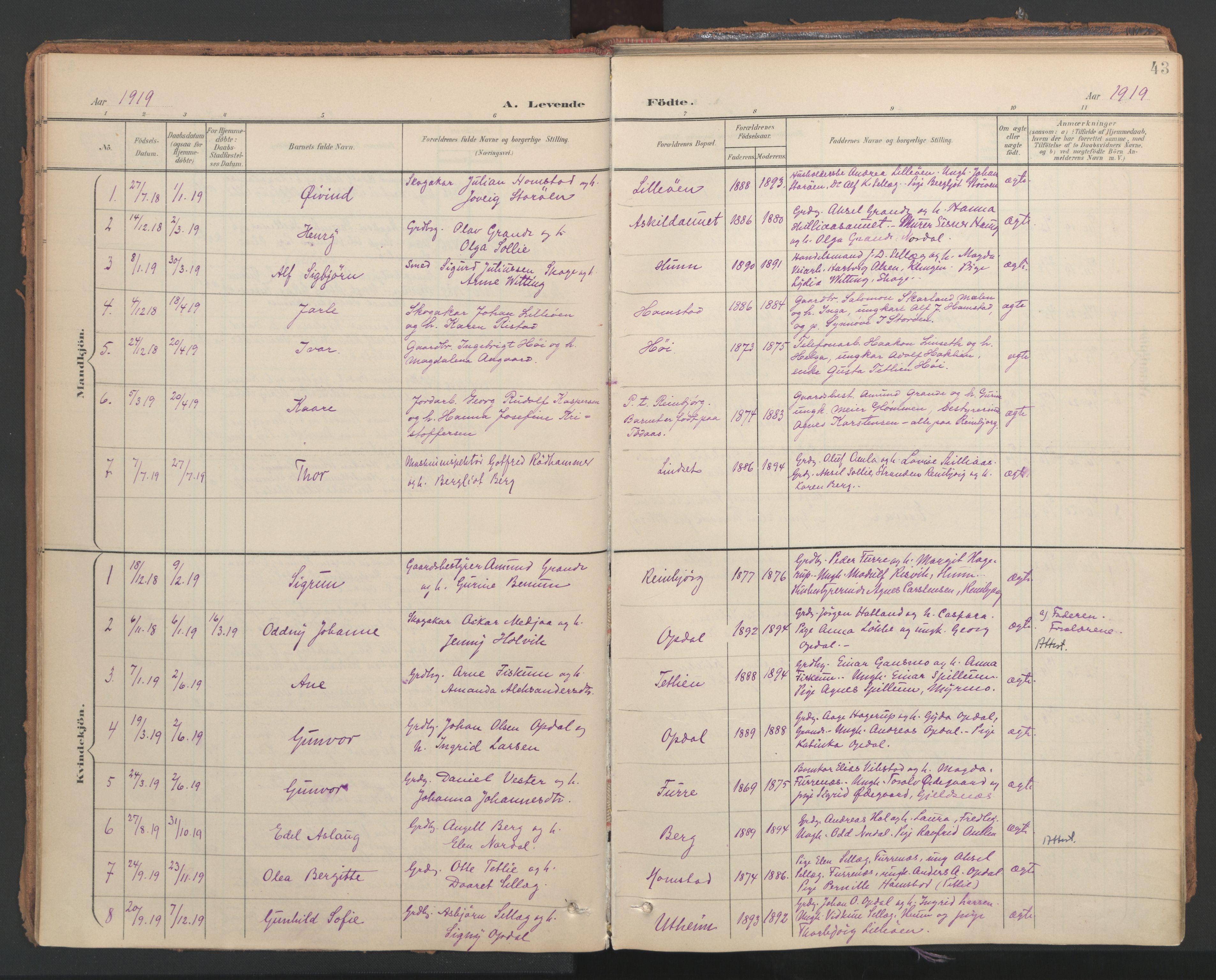 SAT, Ministerialprotokoller, klokkerbøker og fødselsregistre - Nord-Trøndelag, 766/L0564: Ministerialbok nr. 767A02, 1900-1932, s. 43