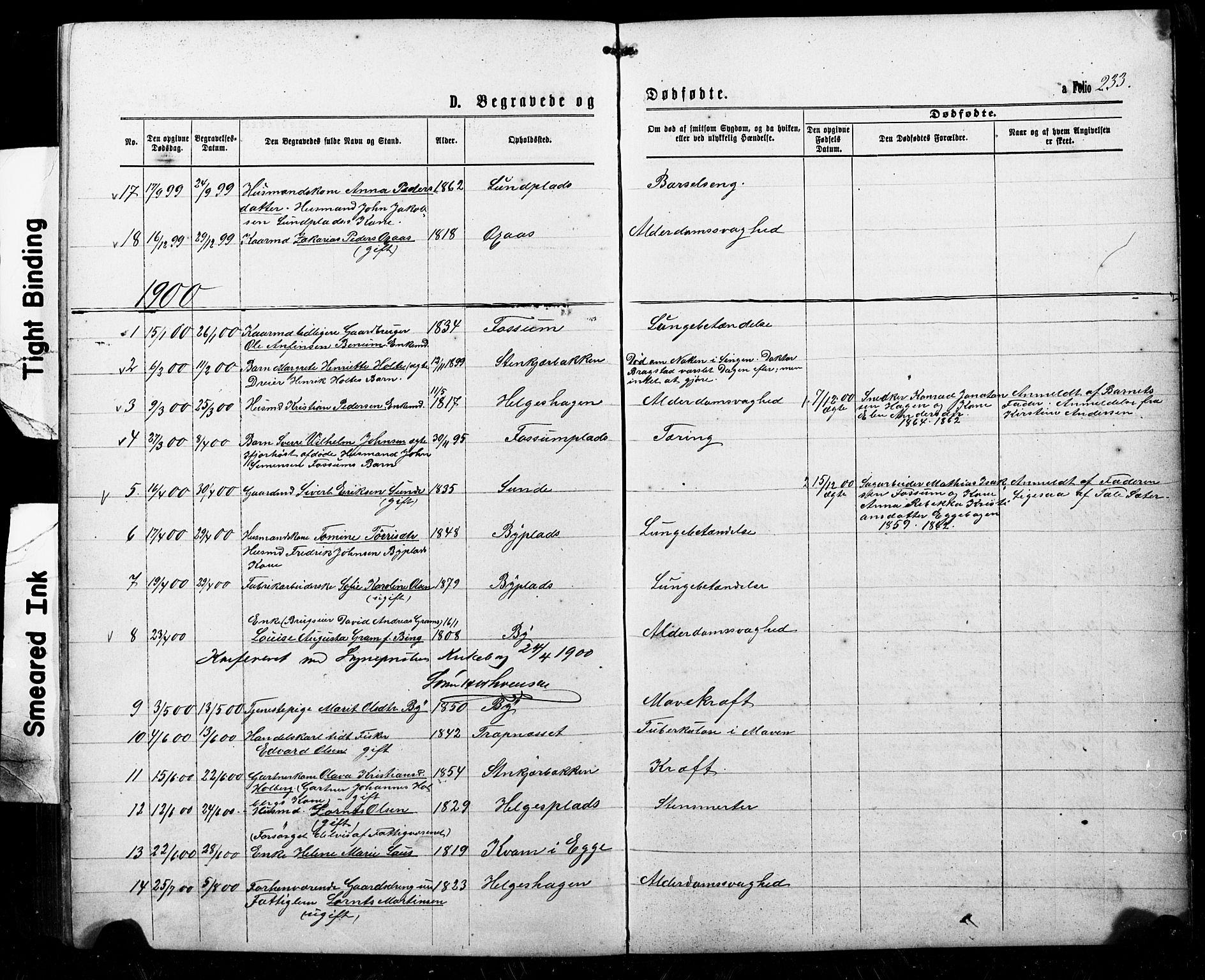 SAT, Ministerialprotokoller, klokkerbøker og fødselsregistre - Nord-Trøndelag, 740/L0380: Klokkerbok nr. 740C01, 1868-1902, s. 233