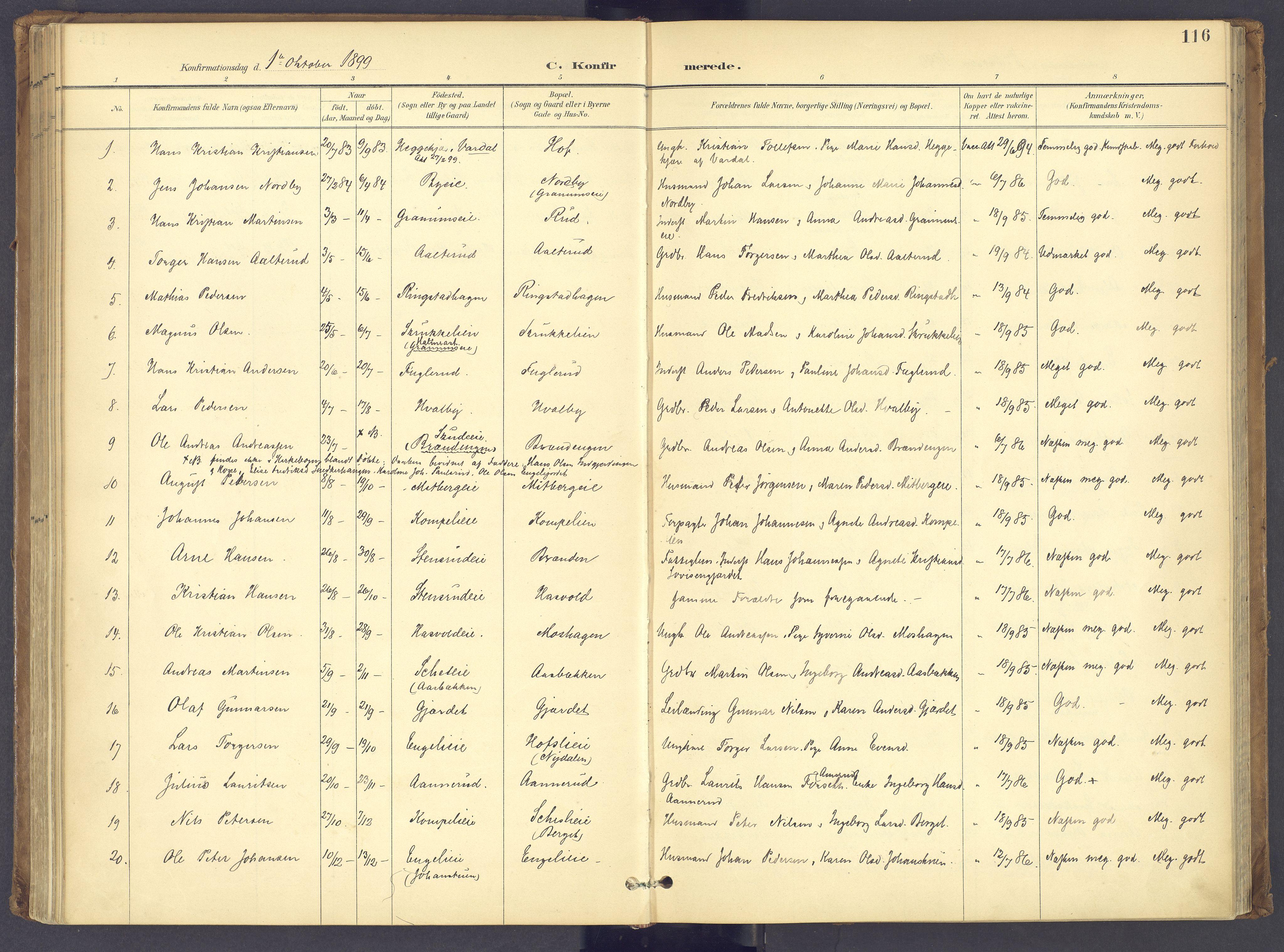 SAH, Søndre Land prestekontor, K/L0006: Ministerialbok nr. 6, 1895-1904, s. 116