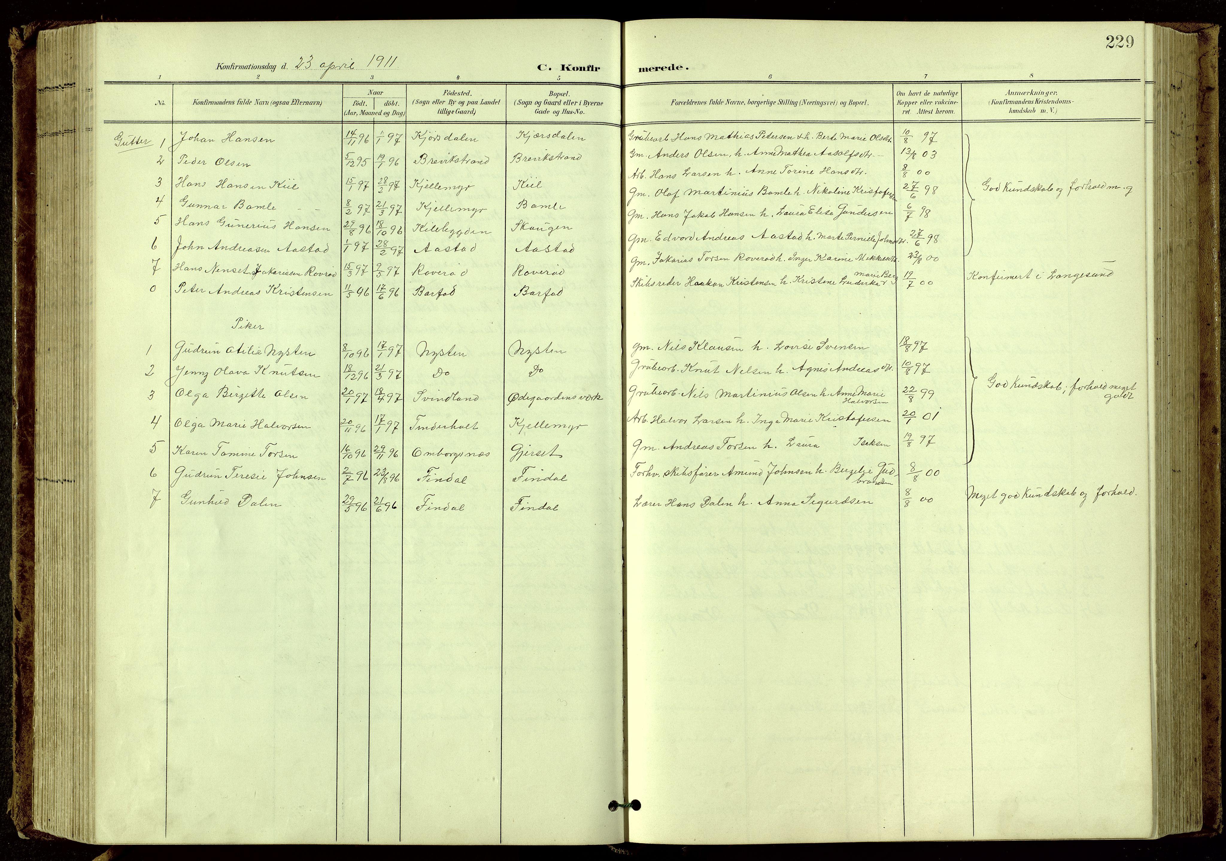 SAKO, Bamble kirkebøker, G/Ga/L0010: Klokkerbok nr. I 10, 1901-1919, s. 229